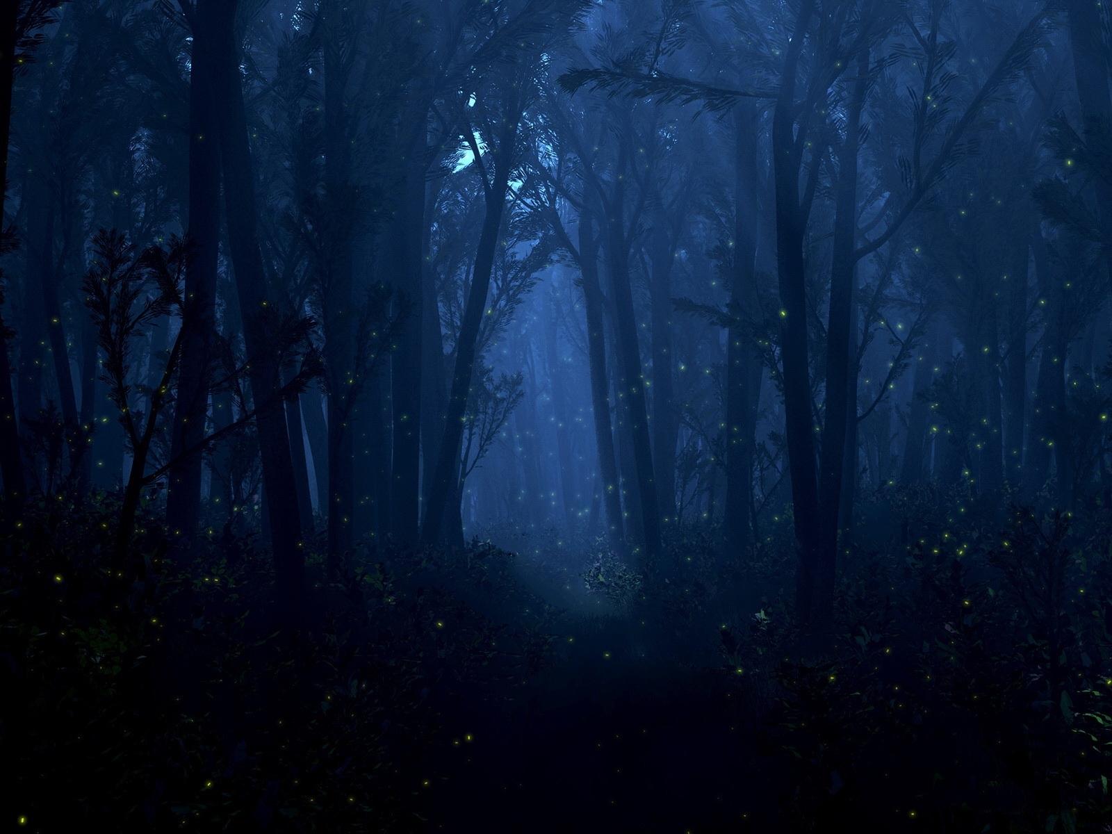 4097 скачать обои Пейзаж, Деревья - заставки и картинки бесплатно