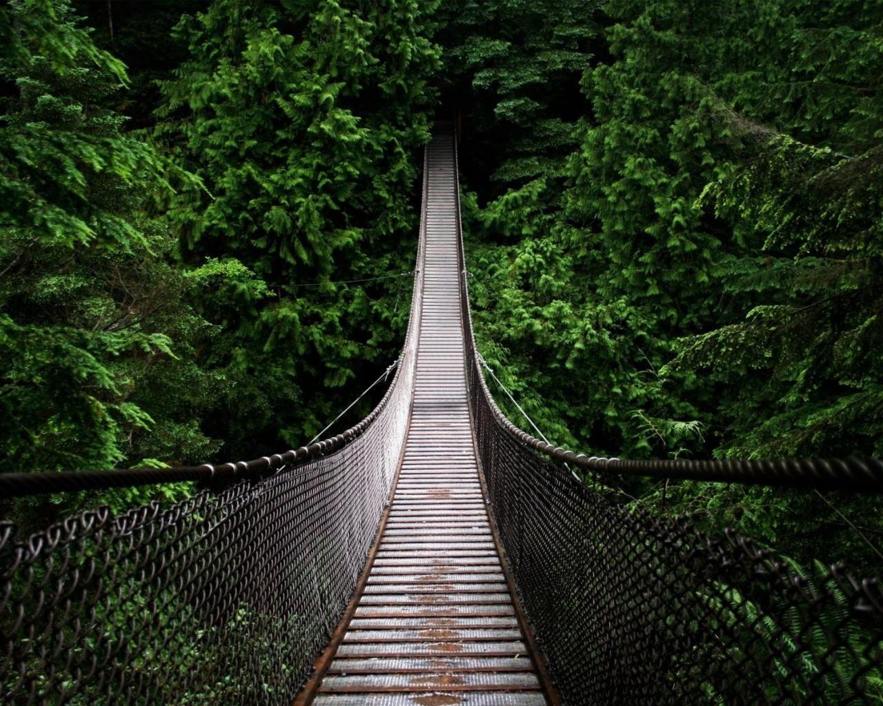 13462 скачать обои Пейзаж, Мосты - заставки и картинки бесплатно