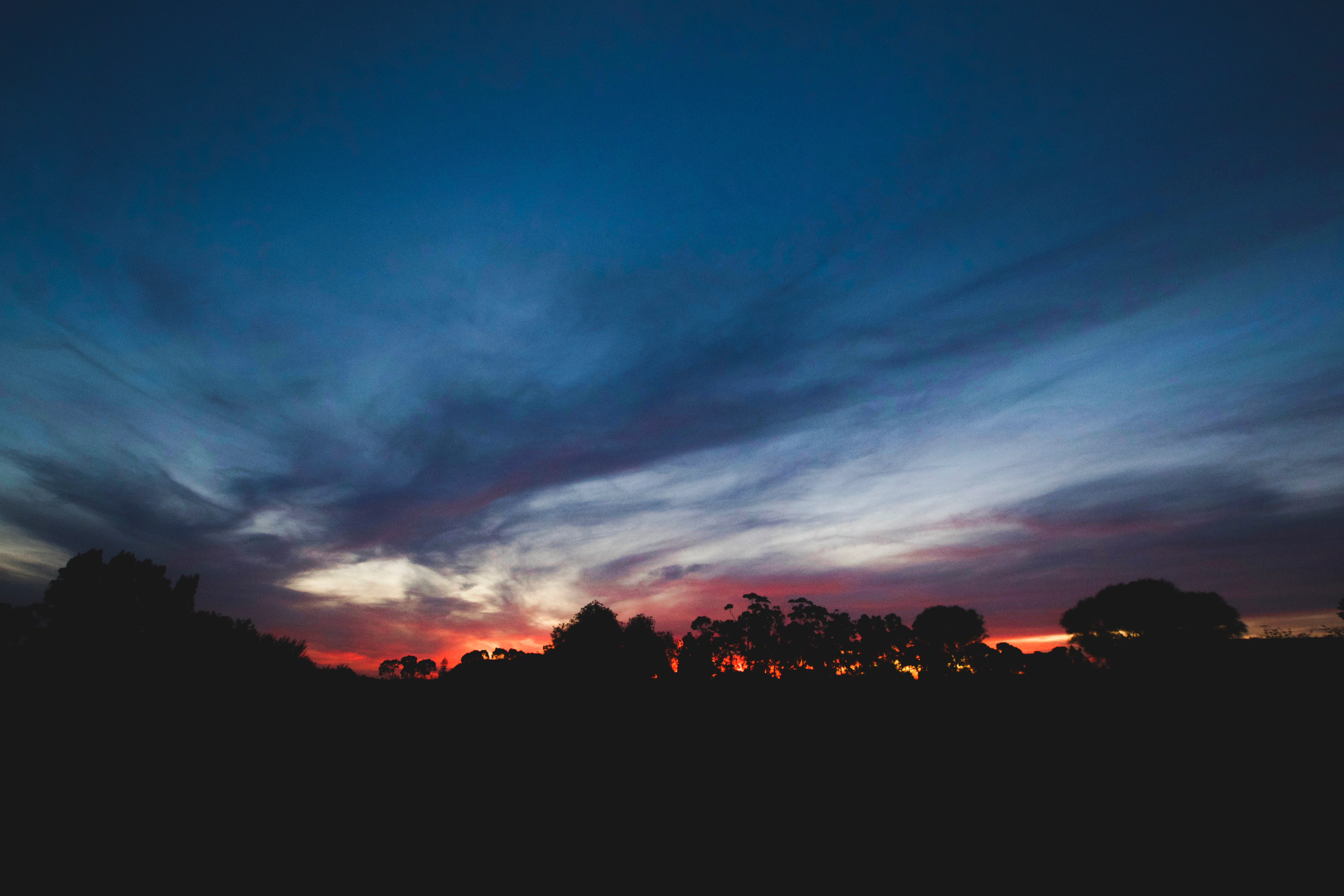 157509 Заставки и Обои Облака на телефон. Скачать Темные, Закат, Деревья, Небо, Облака, Горизонт картинки бесплатно