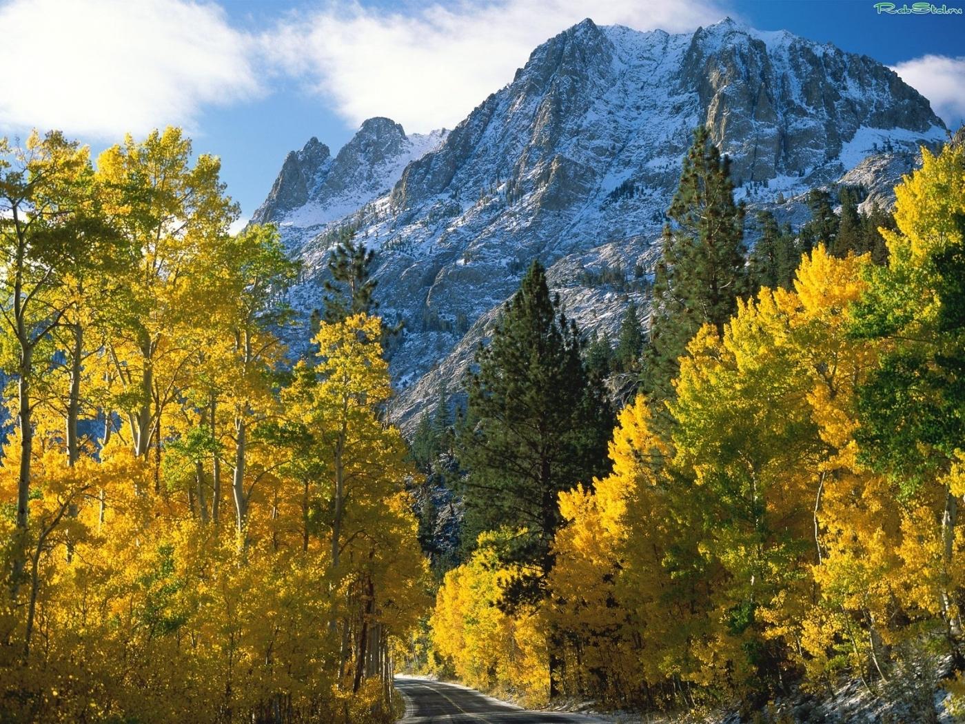 23423 скачать обои Пейзаж, Деревья, Горы, Осень - заставки и картинки бесплатно