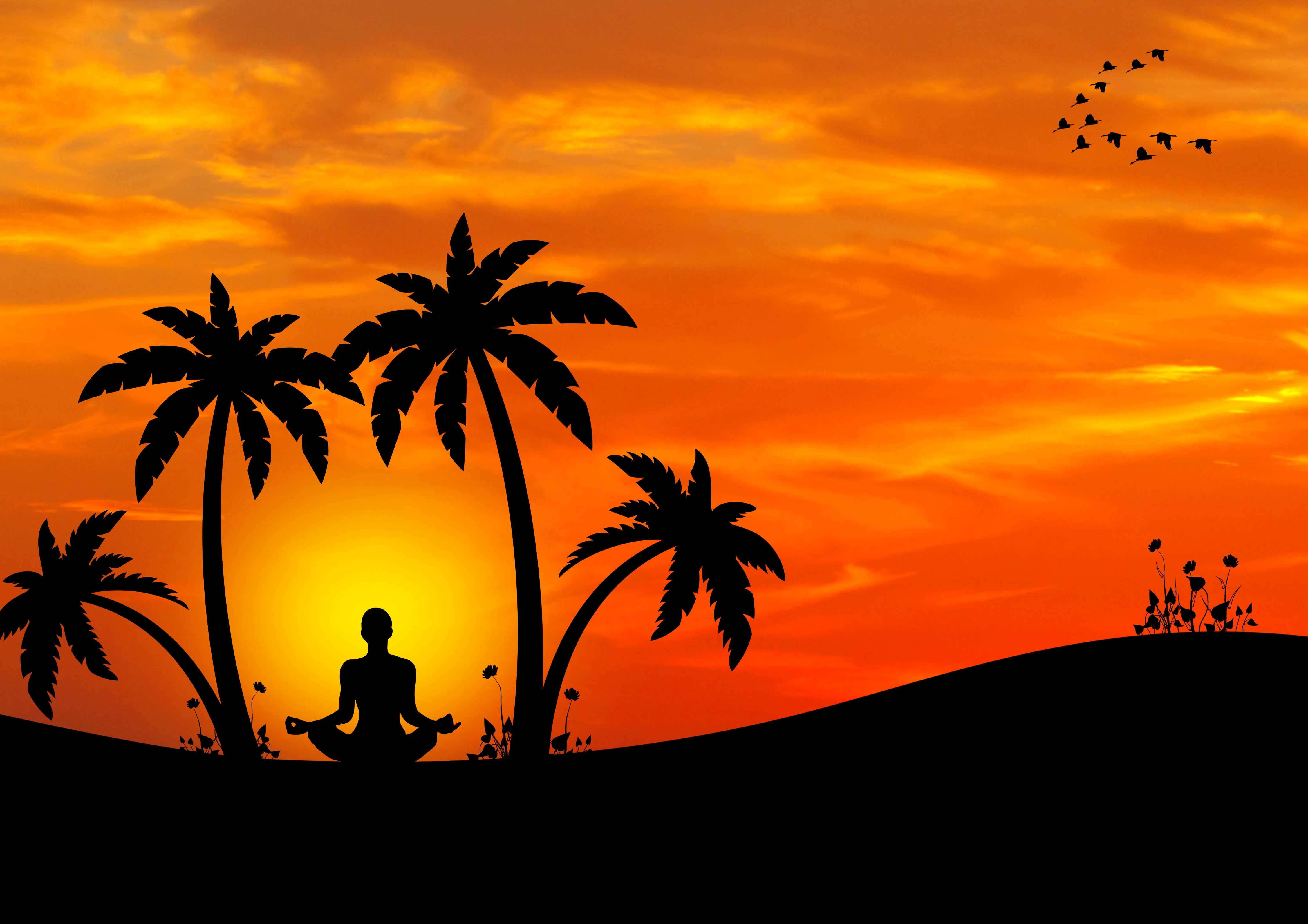 77105 download wallpaper Palms, Vector, Silhouette, Meditation, Harmony, Yoga screensavers and pictures for free