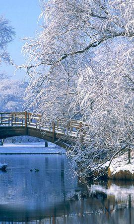 27433 скачать обои Пейзаж, Зима, Река, Мосты, Деревья - заставки и картинки бесплатно