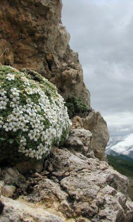 45782 baixar papel de parede Paisagem, Natureza, Montanhas - protetores de tela e imagens gratuitamente