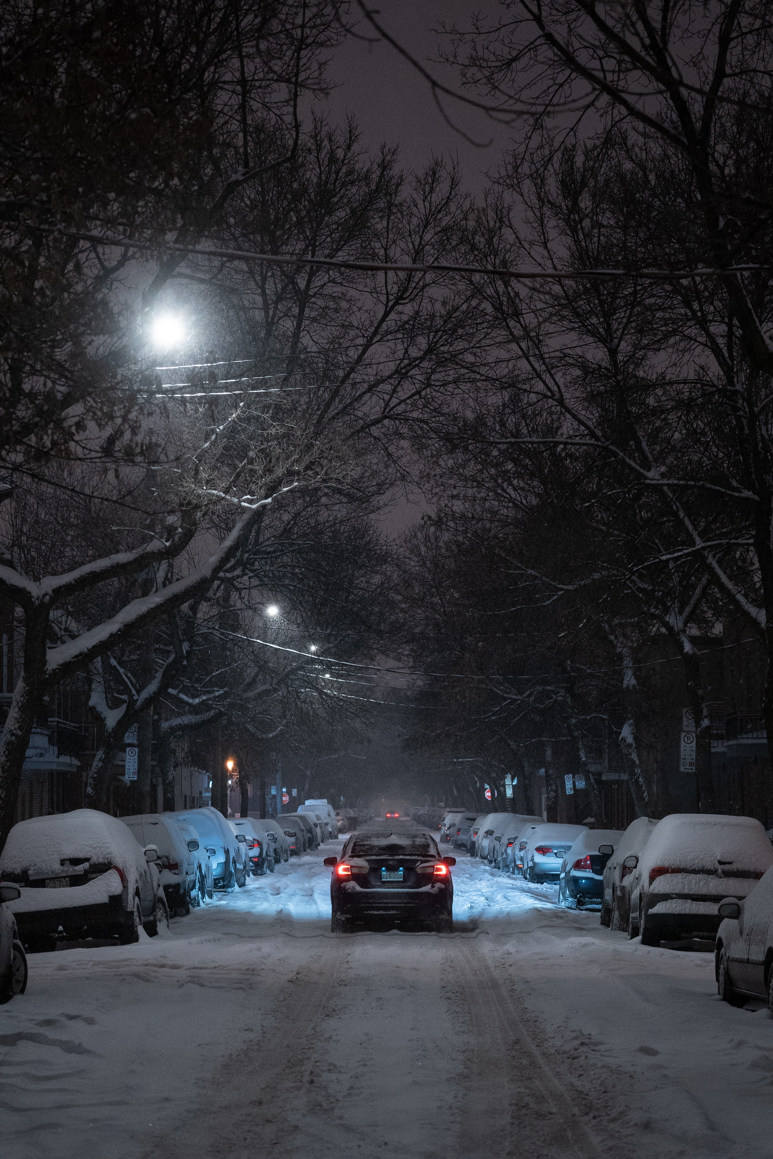 156911 Screensavers and Wallpapers Cities for phone. Download Cities, Winter, Trees, Night, Car, Traffic, Movement, Branches, Street pictures for free