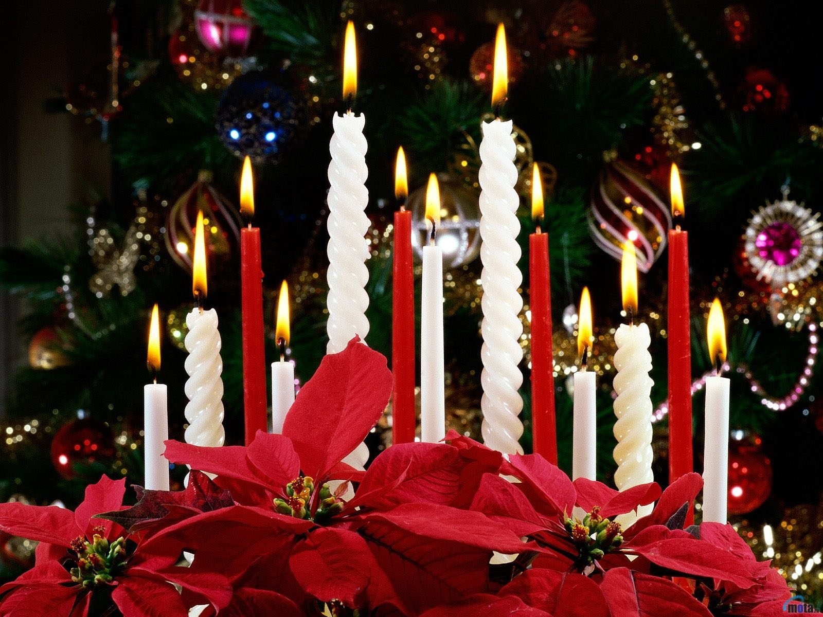 2223 скачать обои Праздники, Новый Год (New Year), Рождество (Christmas, Xmas), Свечи - заставки и картинки бесплатно