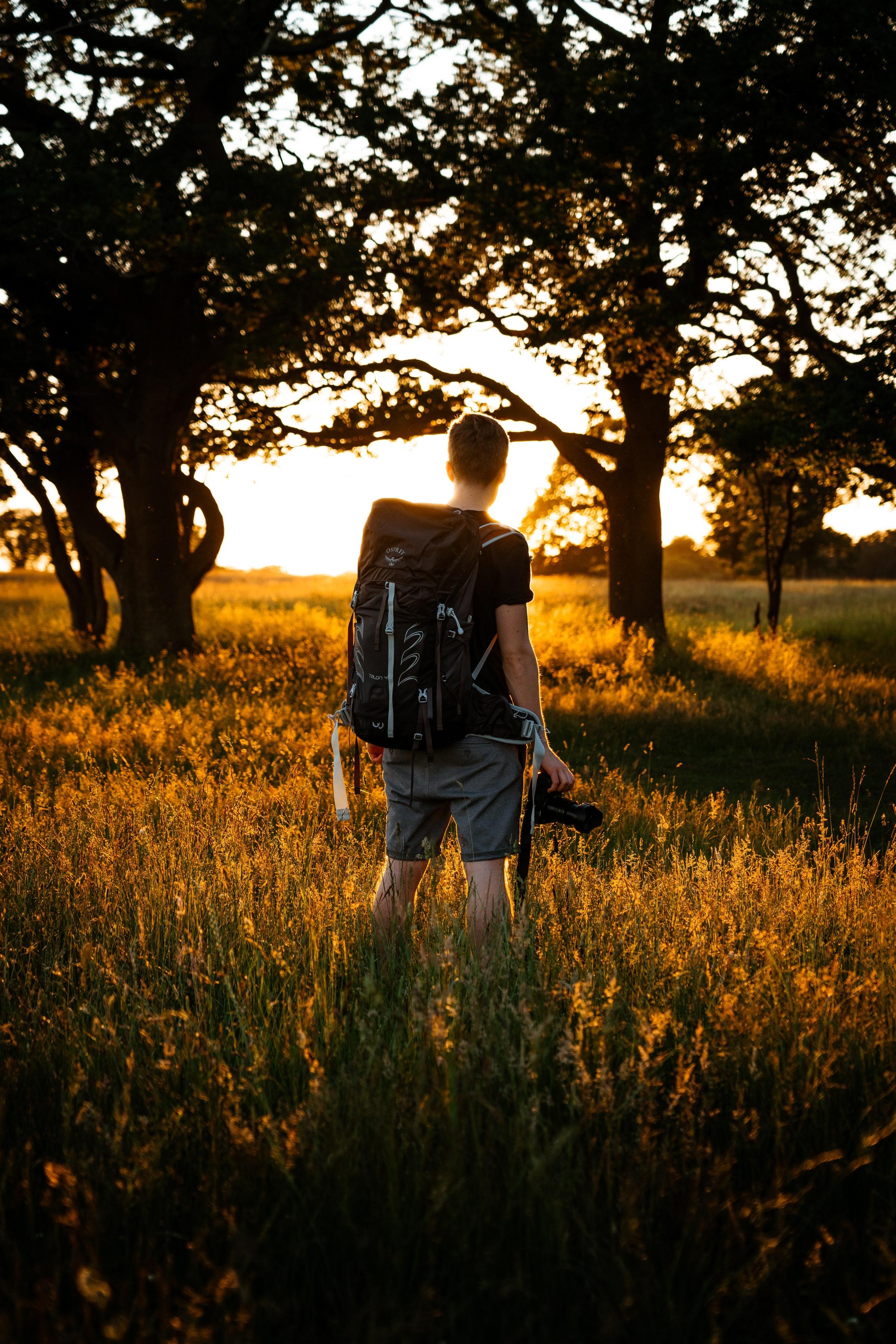 155247 скачать обои Разное, Человек, Фотограф, Деревья, Лучи, Солнце - заставки и картинки бесплатно