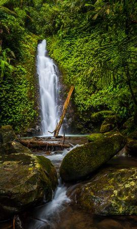 106410 descargar fondo de pantalla Naturaleza, Cascada, Stones, Las Rocas, Rocas, Plantas: protectores de pantalla e imágenes gratis