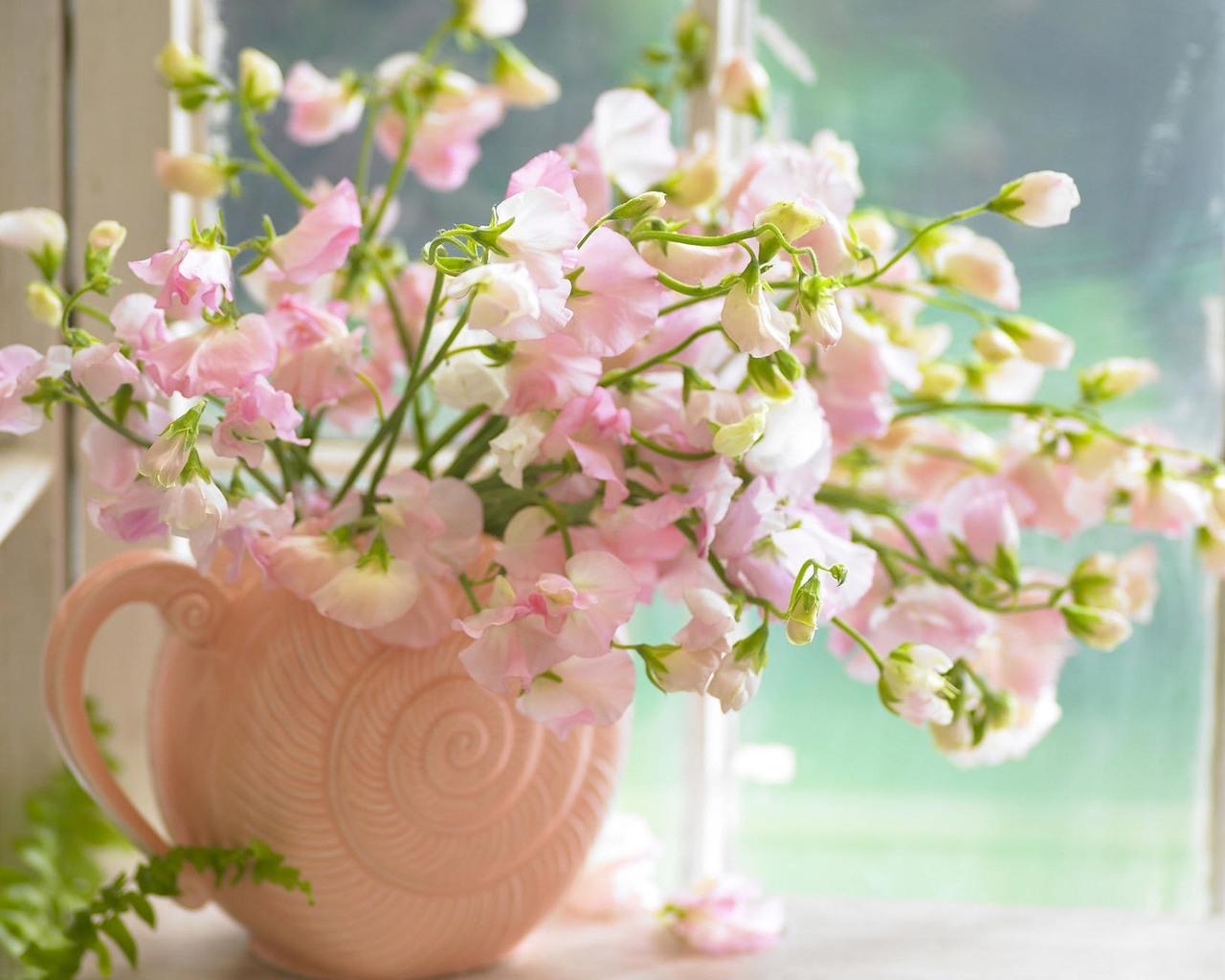 9993 descargar fondo de pantalla Plantas, Flores: protectores de pantalla e imágenes gratis