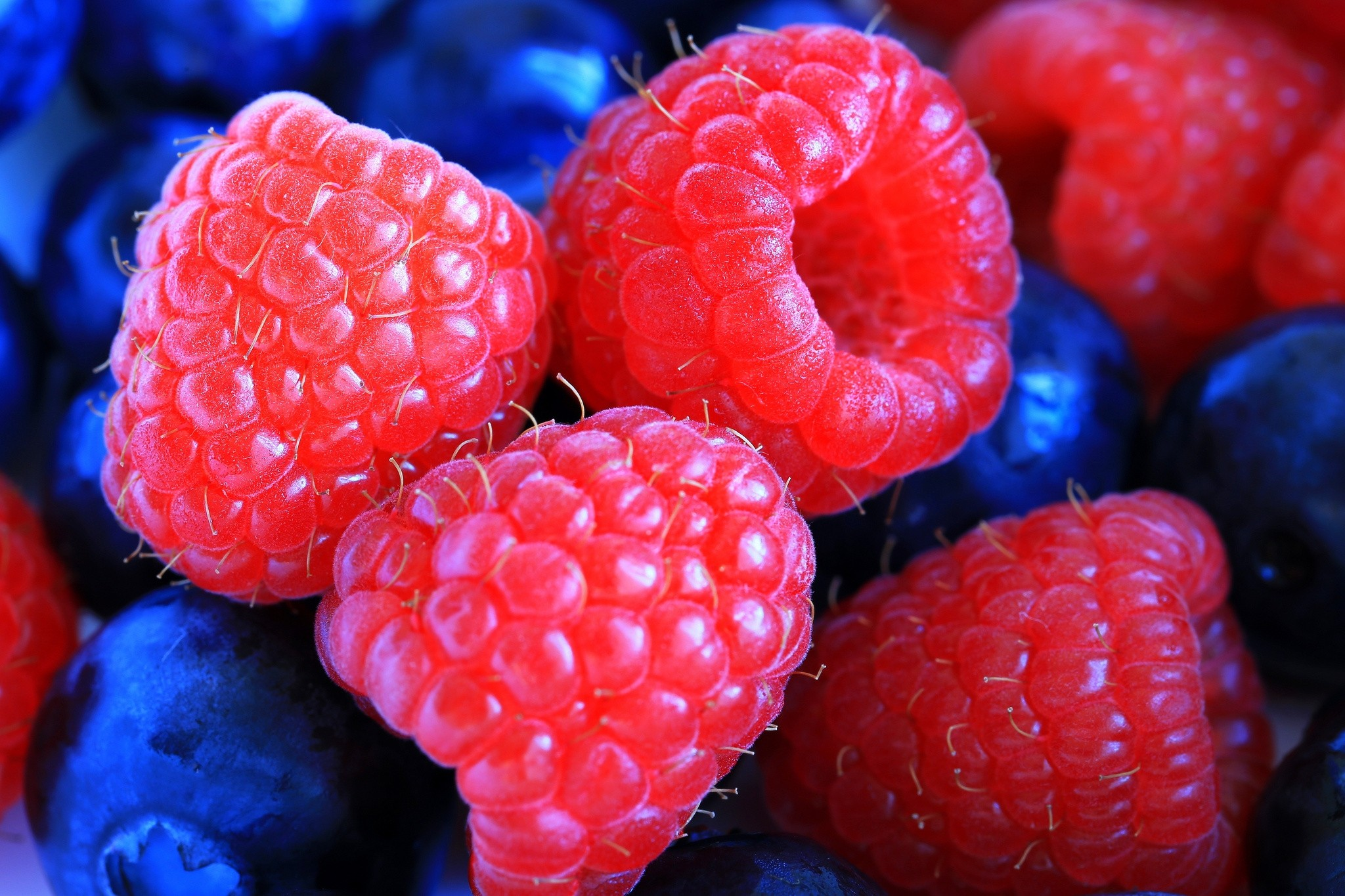 111779 download wallpaper Raspberry, Macro, Berry, Lingonberry, Cowberry screensavers and pictures for free