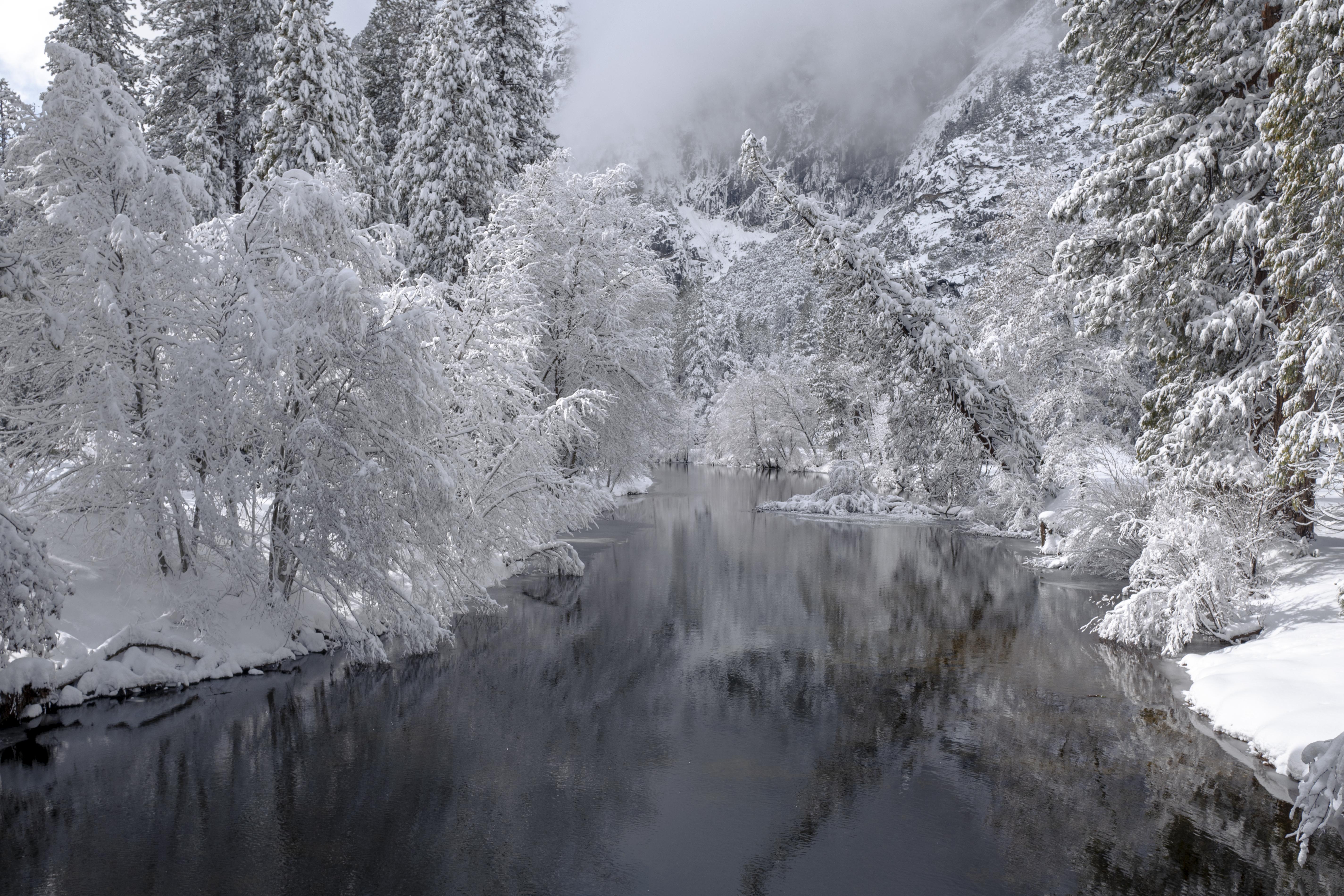 59626 Заставки и Обои Зима на телефон. Скачать Природа, Река, Деревья, Снег, Зима, Пейзаж картинки бесплатно