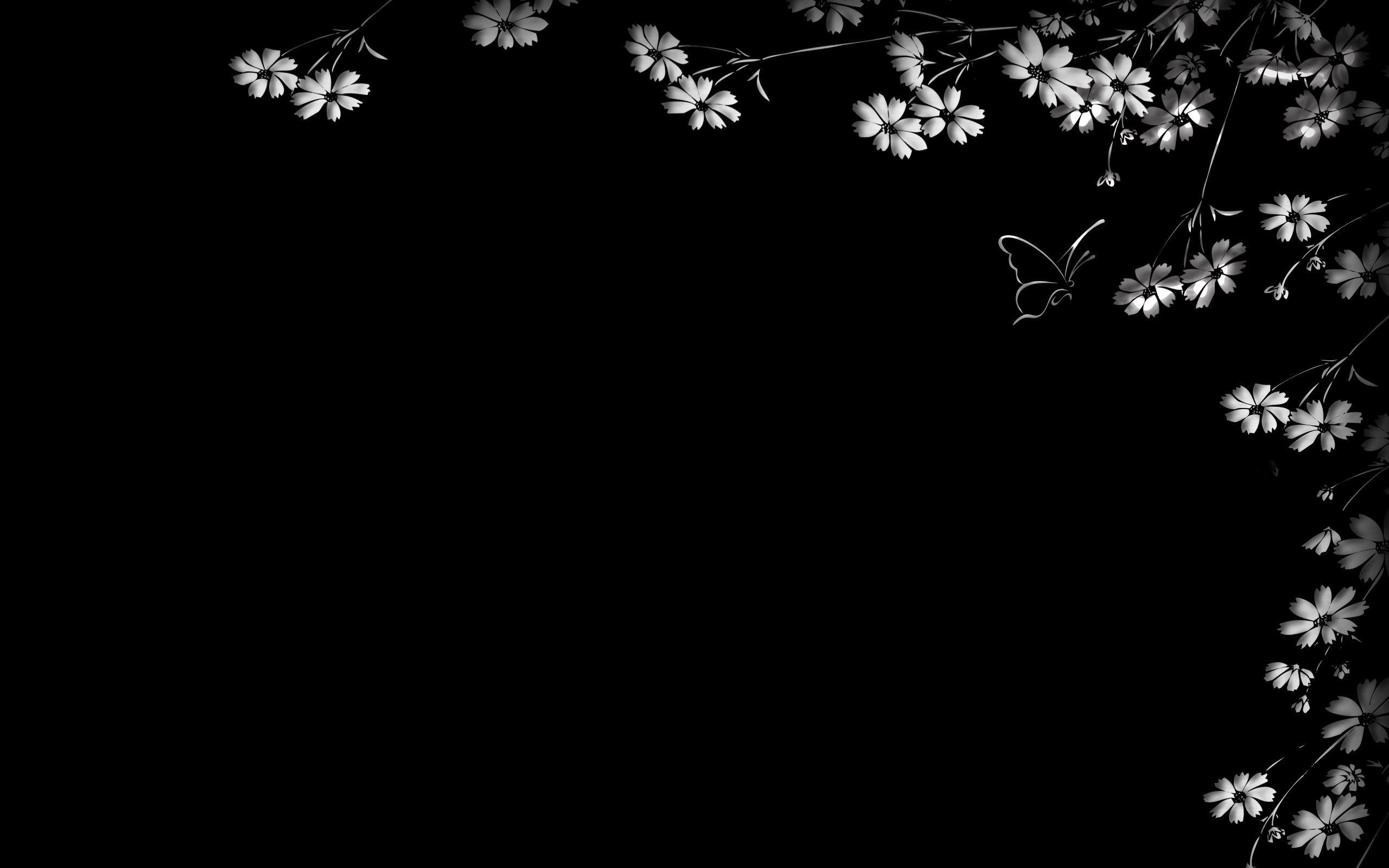 94045 Hintergrundbild herunterladen Blumen, Schmetterling, Schwarzer Hintergrund - Bildschirmschoner und Bilder kostenlos