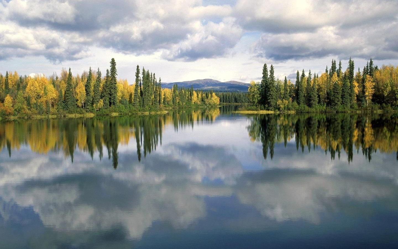25789 скачать обои Пейзаж, Река, Деревья, Небо, Облака - заставки и картинки бесплатно