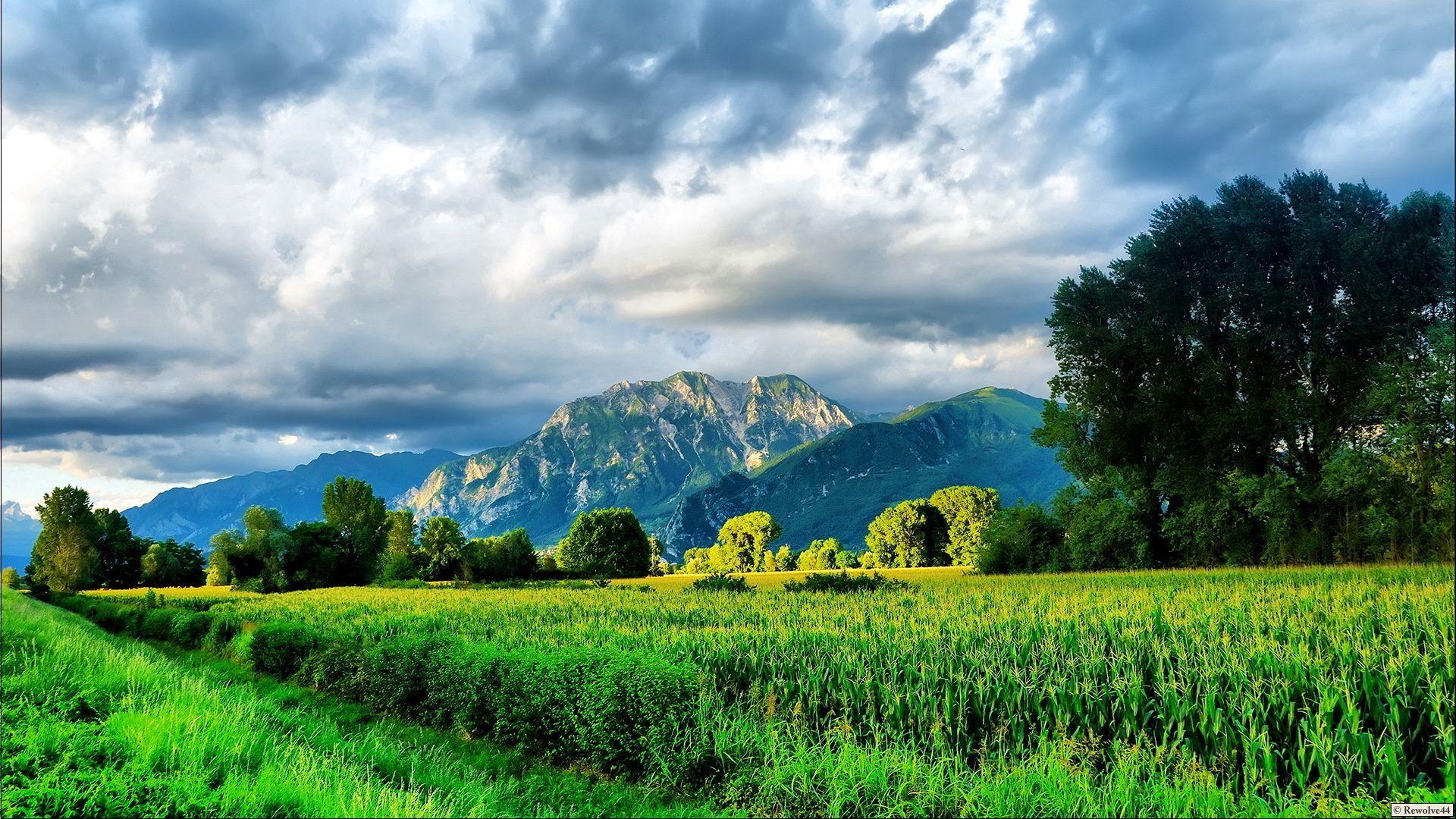 127234 Hintergrundbild herunterladen Grünen, Natur, Mountains, Sommer, Hell, Straße, Grüne, Feld, Mais - Bildschirmschoner und Bilder kostenlos