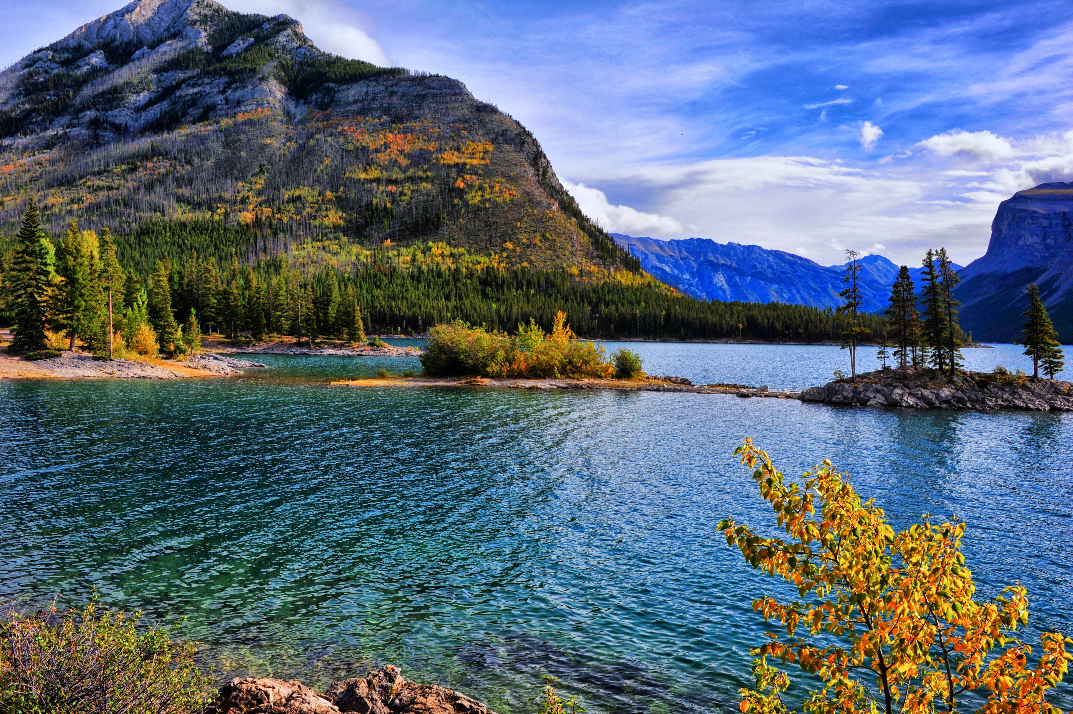 133321 завантажити шпалери Природа, Схил, Озеро, Ліс, Дерева, Осінь - заставки і картинки безкоштовно