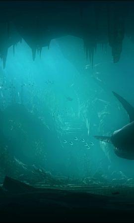 19891 baixar papel de parede Animais, Mar, Sharks, Peixes, Imagens - protetores de tela e imagens gratuitamente