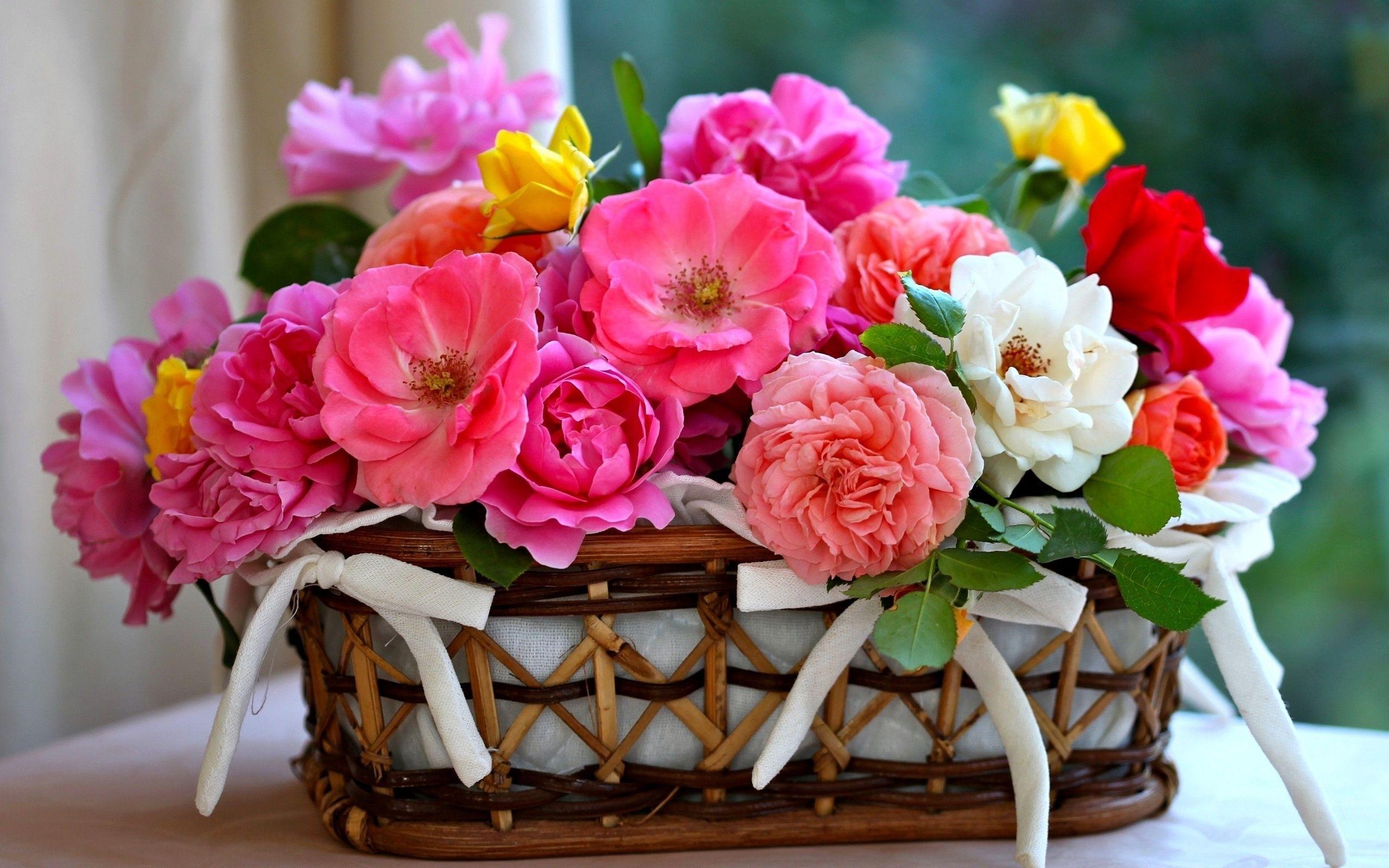 38474 скачать обои Растения, Цветы, Букеты - заставки и картинки бесплатно