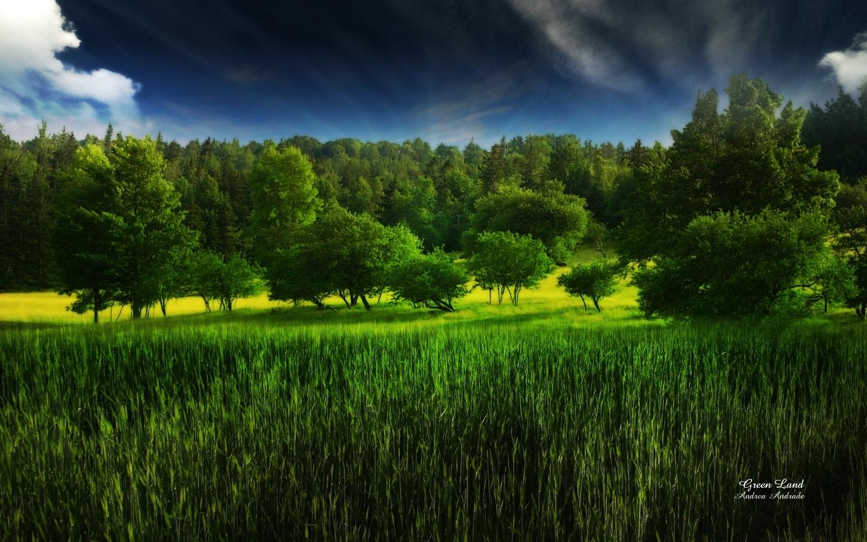 9246 скачать обои Пейзаж, Деревья, Трава - заставки и картинки бесплатно
