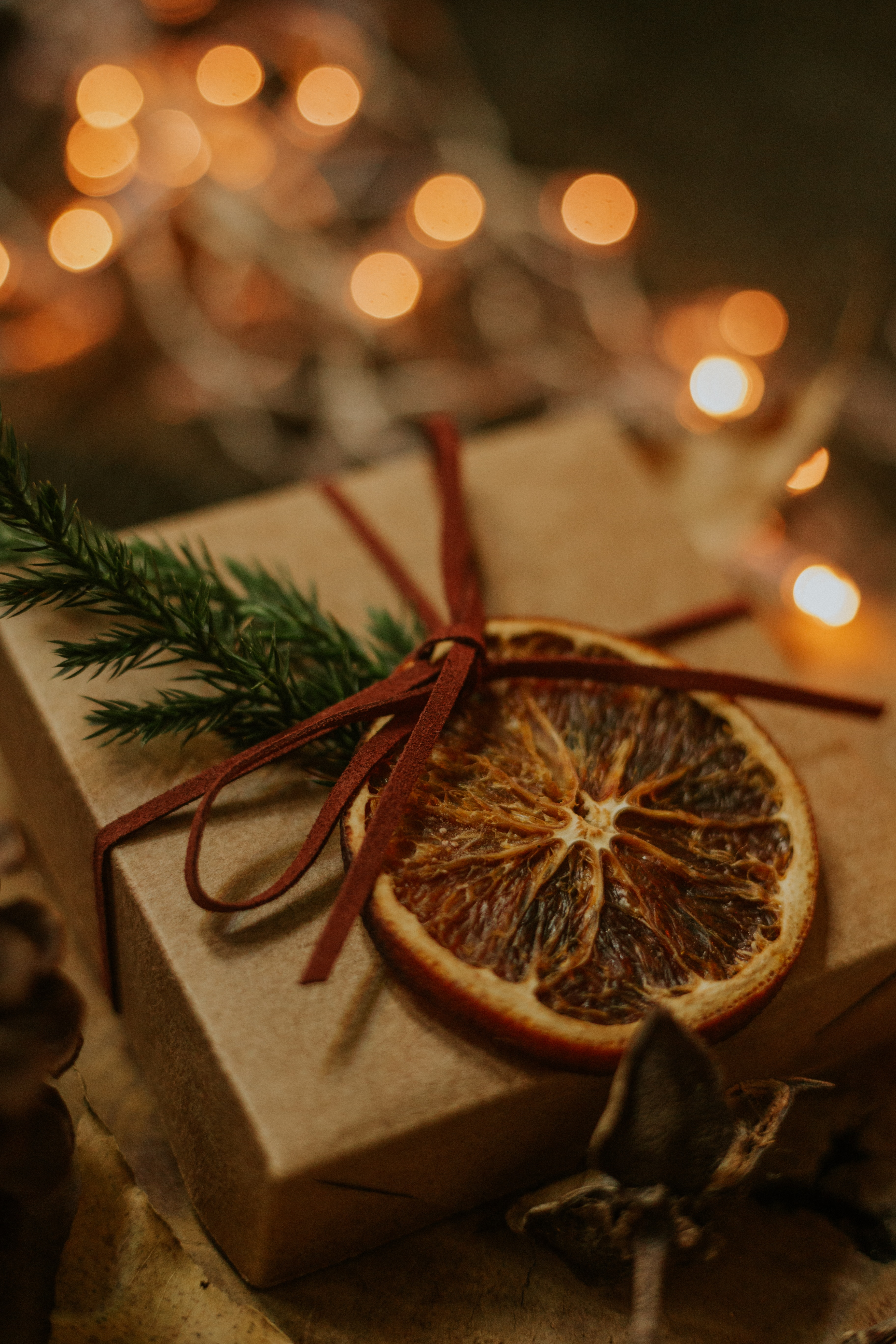 86246 download wallpaper Holidays, Present, Gift, Box, Bow, Branch, Lobule, Clove screensavers and pictures for free