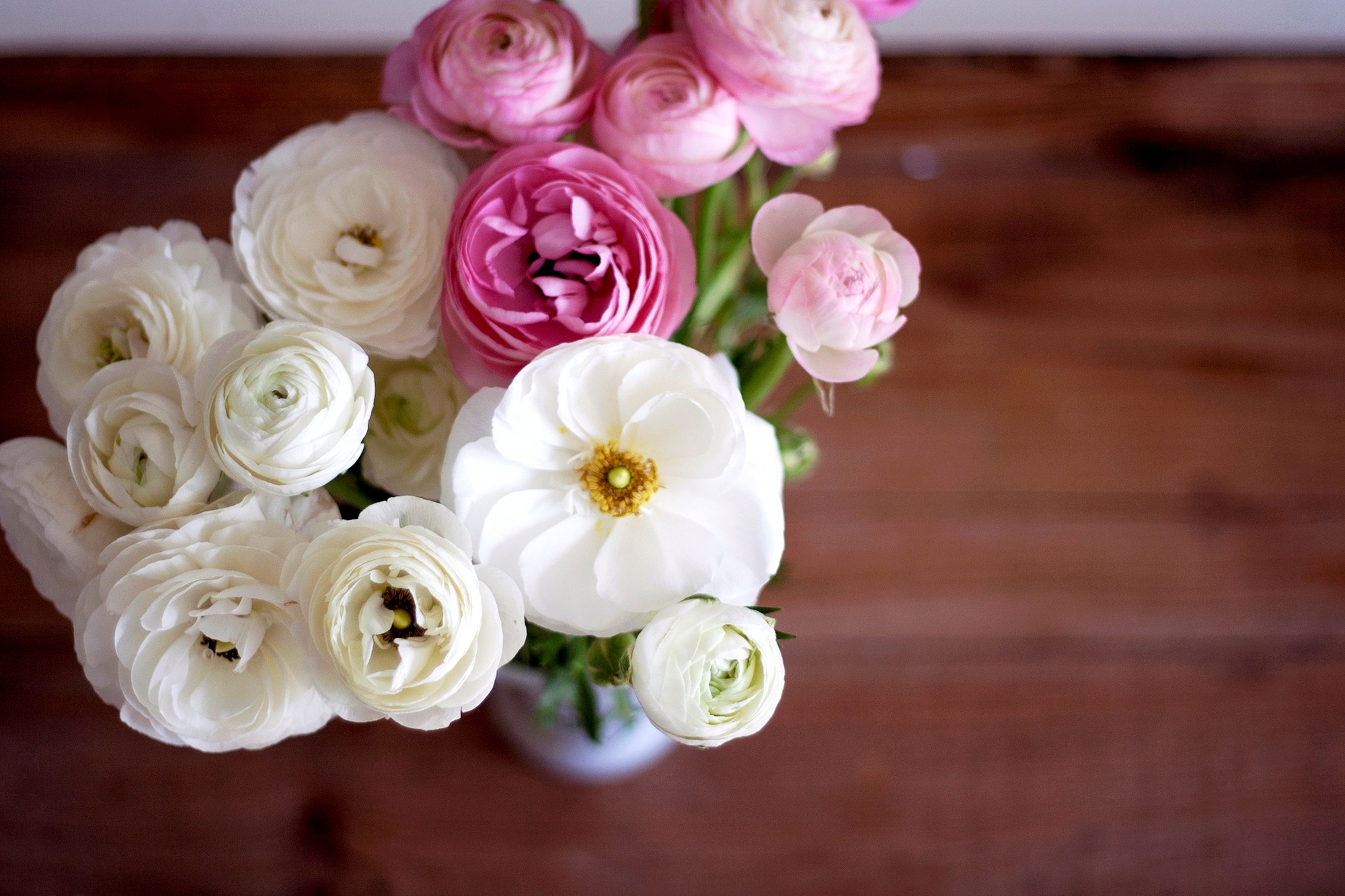 137002 Screensavers and Wallpapers Bouquet for phone. Download Bouquet, Flowers, Pink, Petals, Vase, Buds, Ranunculus, Buttercups pictures for free