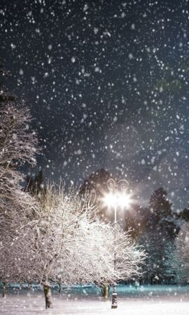 29889 скачать обои Пейзаж, Зима, Ночь, Снег - заставки и картинки бесплатно