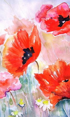 17185 скачать обои Растения, Цветы, Маки, Рисунки - заставки и картинки бесплатно