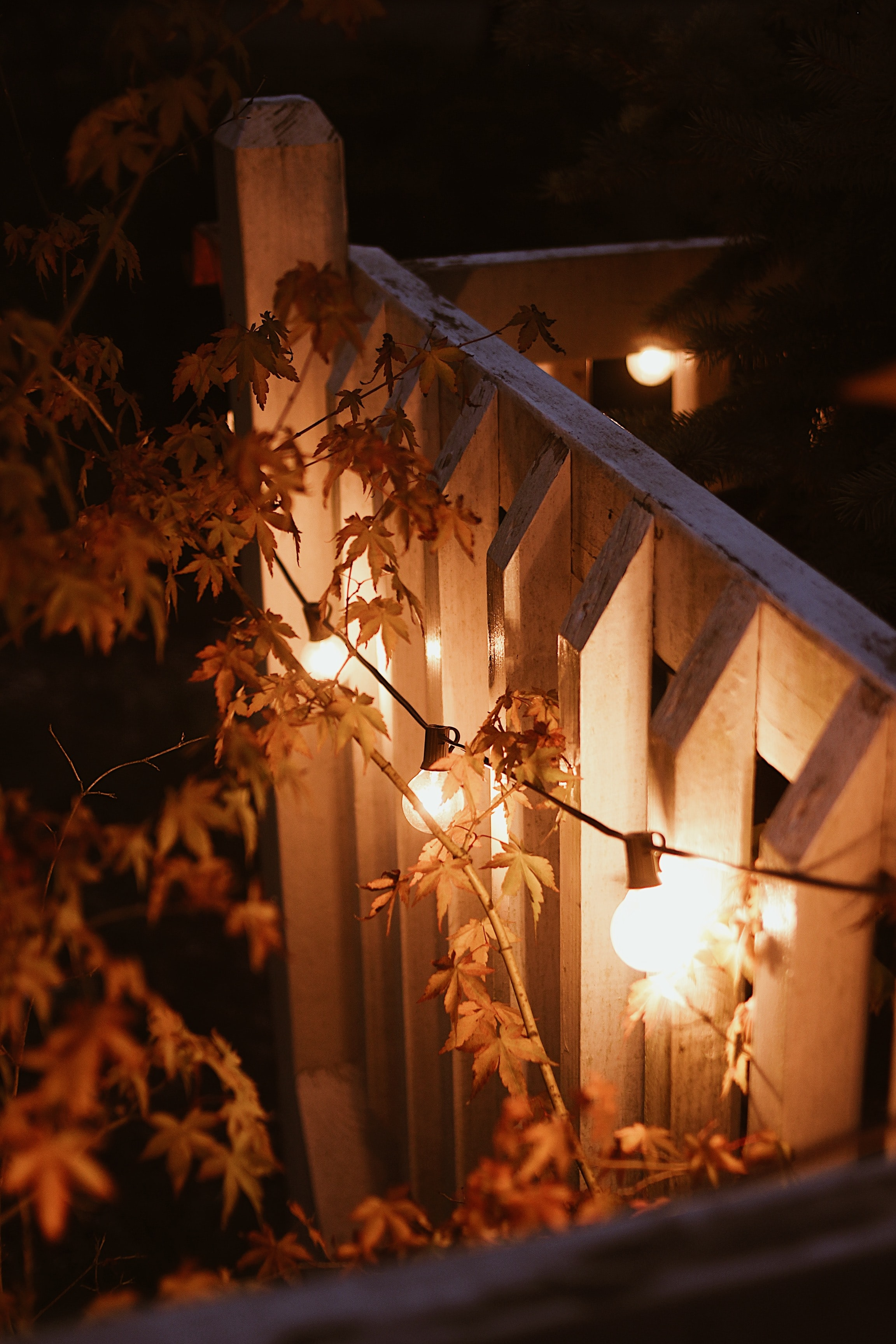 104103 download wallpaper Miscellanea, Miscellaneous, Garland, Lamps, Lamp, Glow, Branches, Evening screensavers and pictures for free