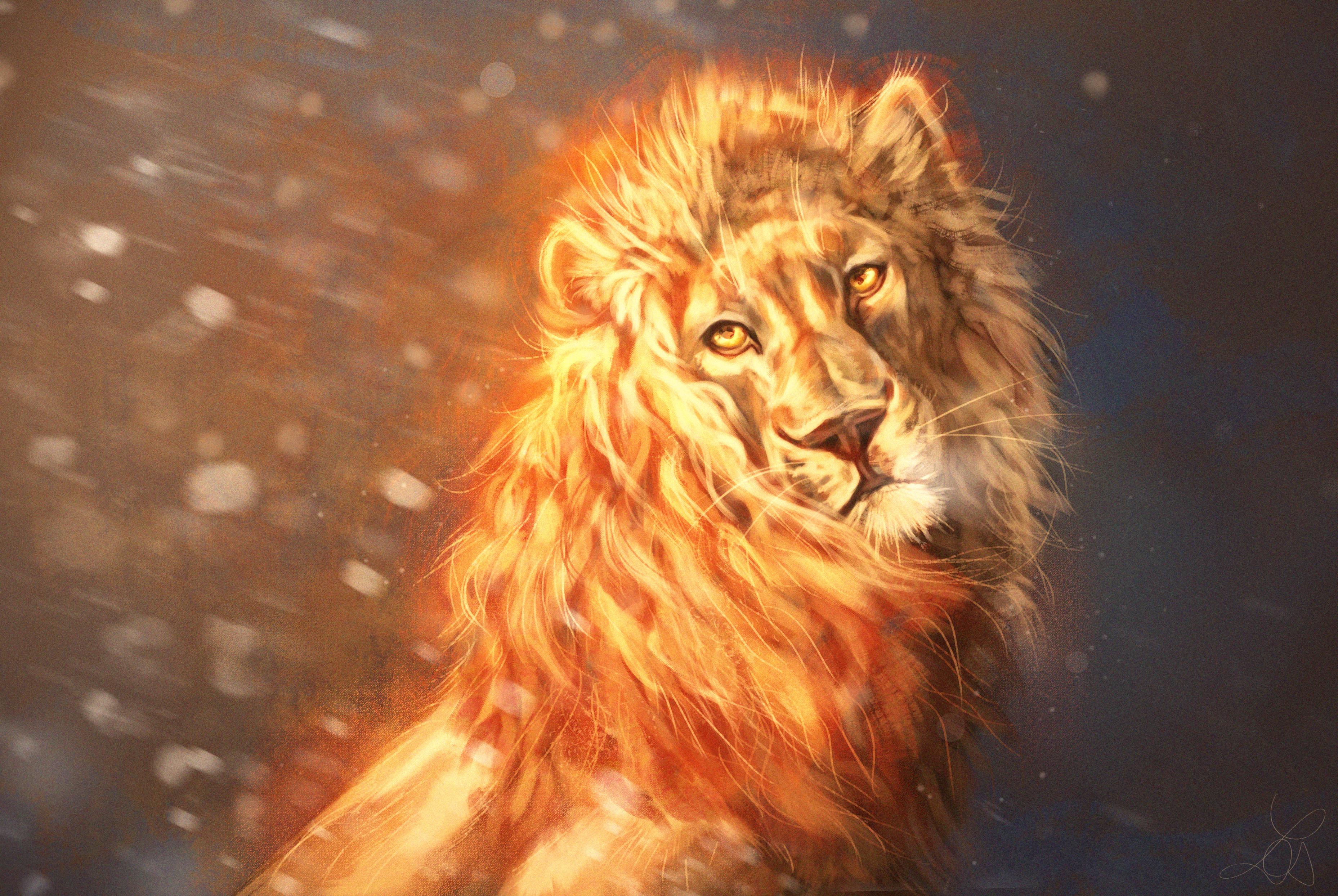 68697 Hintergrundbild herunterladen Kunst, Ein Löwe, Löwe, Raubtier, Predator, Sicht, Meinung, König Der Bestien - Bildschirmschoner und Bilder kostenlos