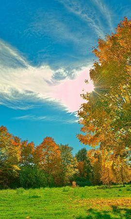 24925 скачать обои Пейзаж, Деревья, Осень, Солнце, Облака - заставки и картинки бесплатно