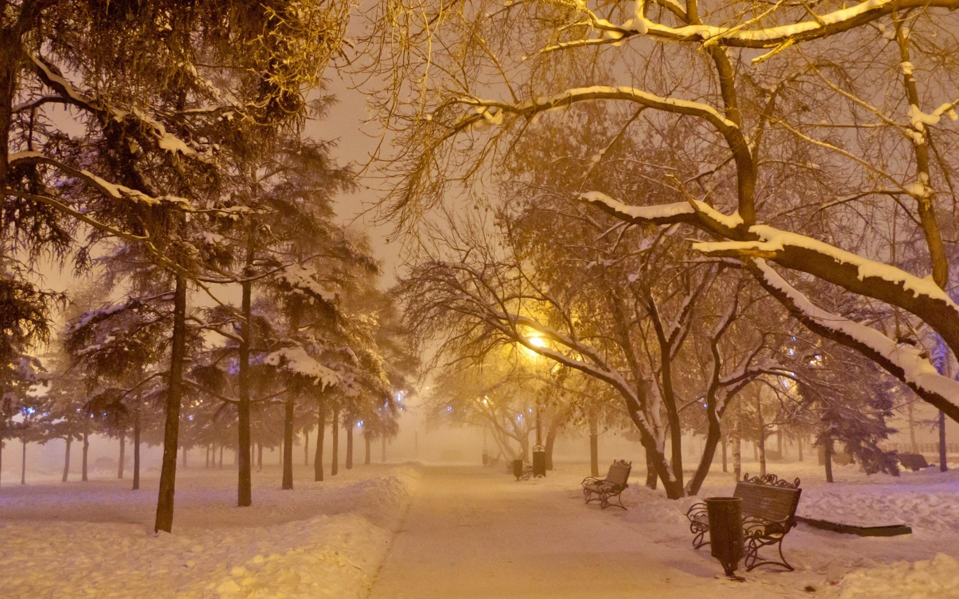 22026 завантажити шпалери Пейзаж, Зима, Дерева, Дороги, Сніг - заставки і картинки безкоштовно