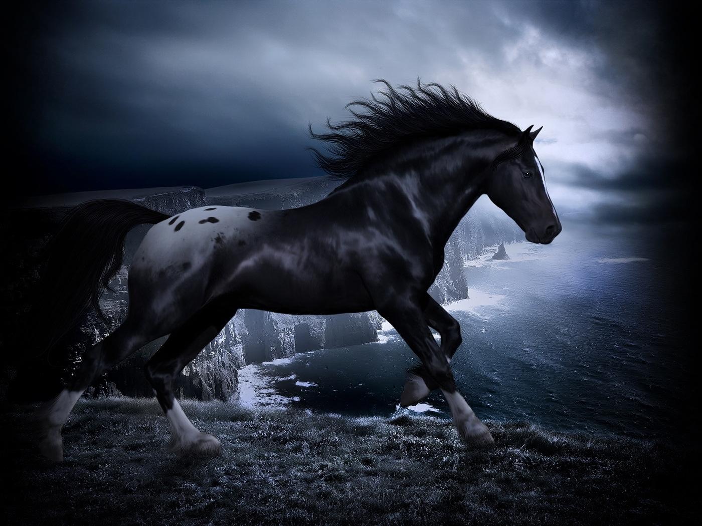 Laden Sie das kostenlose Hintergrundbild 27629: Tiere, Pferde Hintergrundbild für das Handy herunter
