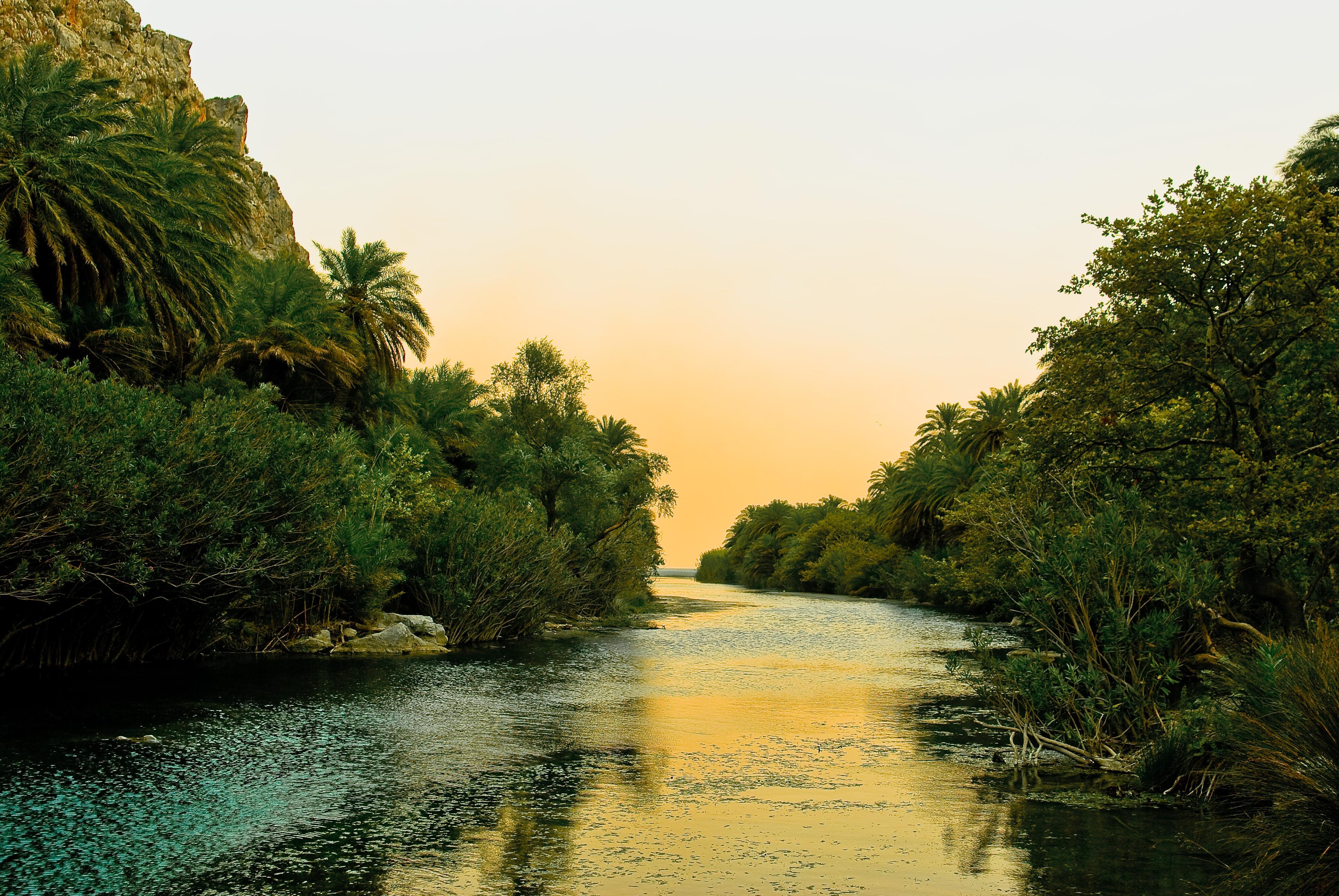 124499 免費下載壁紙 性质, 希腊, 克里特岛, 海岸, 采取, 度假村, 多云, 棕榈 屏保和圖片