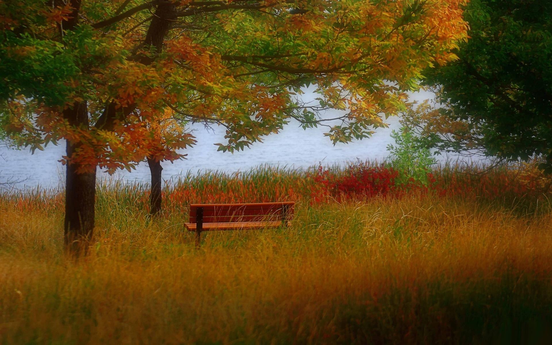Handy-Wallpaper Landschaft, Flüsse, Bäume, Grass, Herbst kostenlos herunterladen.