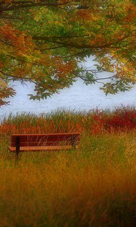 21954 скачать обои Пейзаж, Река, Деревья, Трава, Осень - заставки и картинки бесплатно