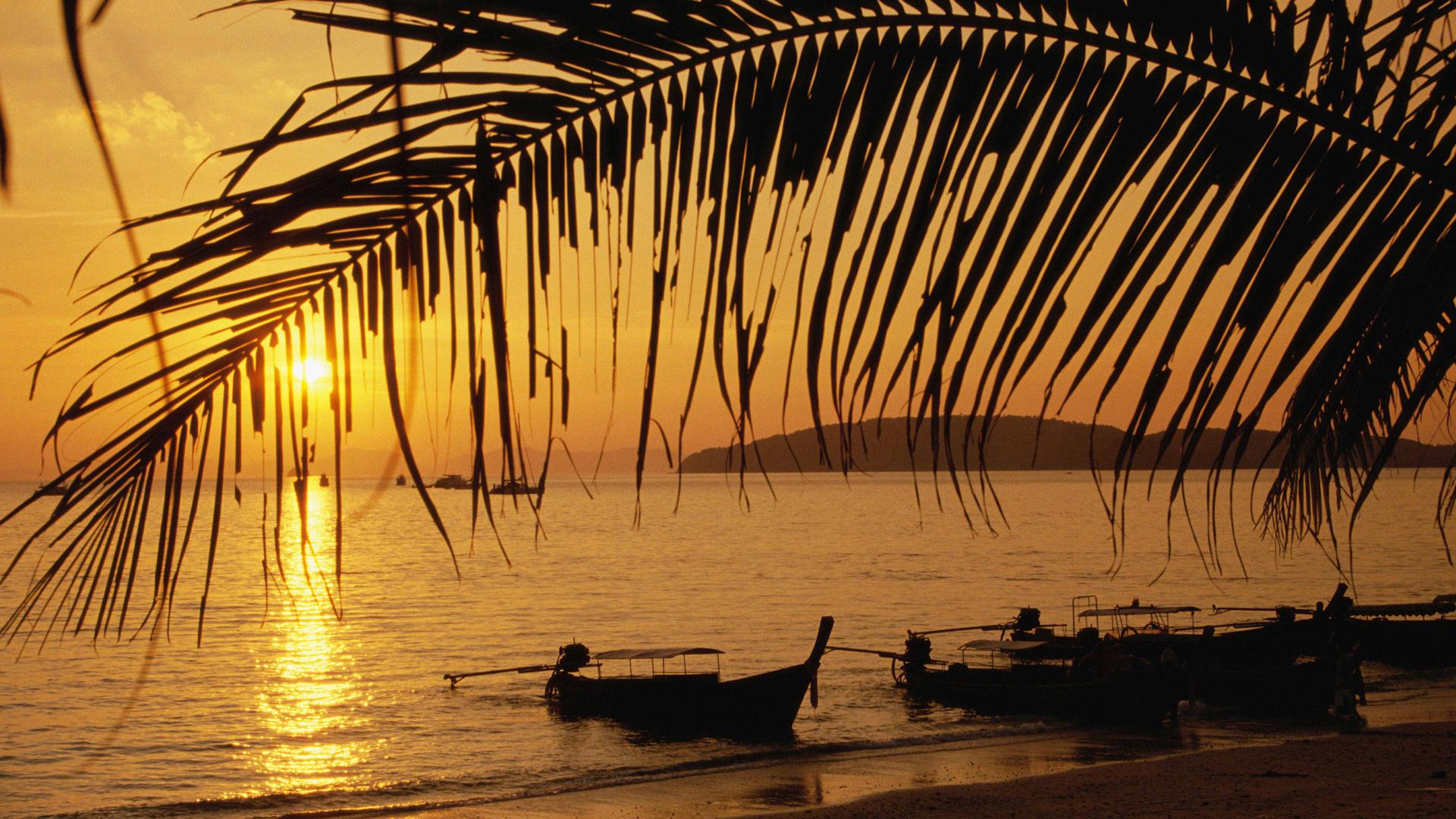 25482 скачать обои Пейзаж, Закат, Море, Пальмы, Лодки - заставки и картинки бесплатно