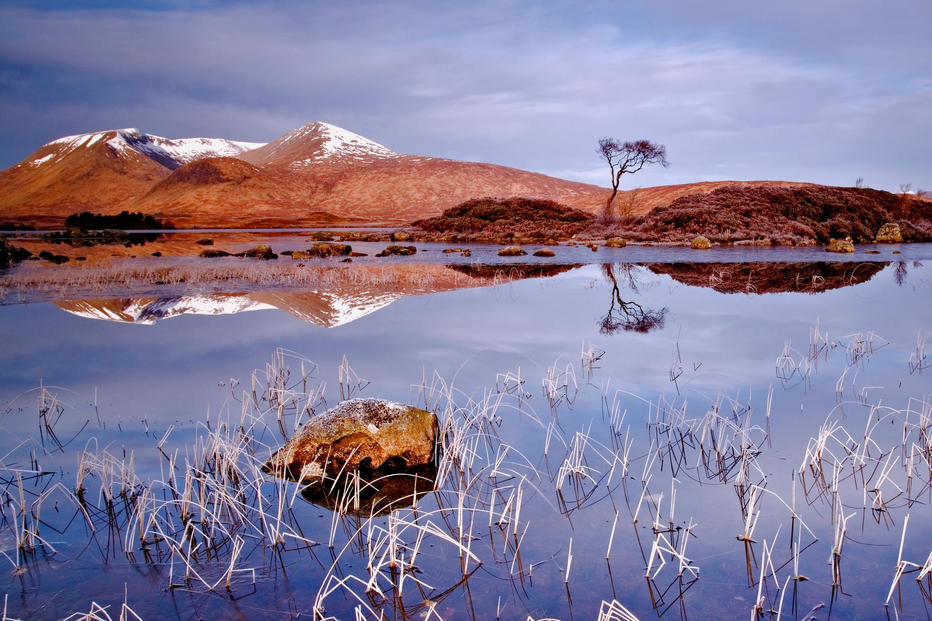 52254 скачать обои Природа, Трава, Осень, Озеро, Пасмурно, Отражение, Камень, Дерево, Холод, Пейзаж - заставки и картинки бесплатно
