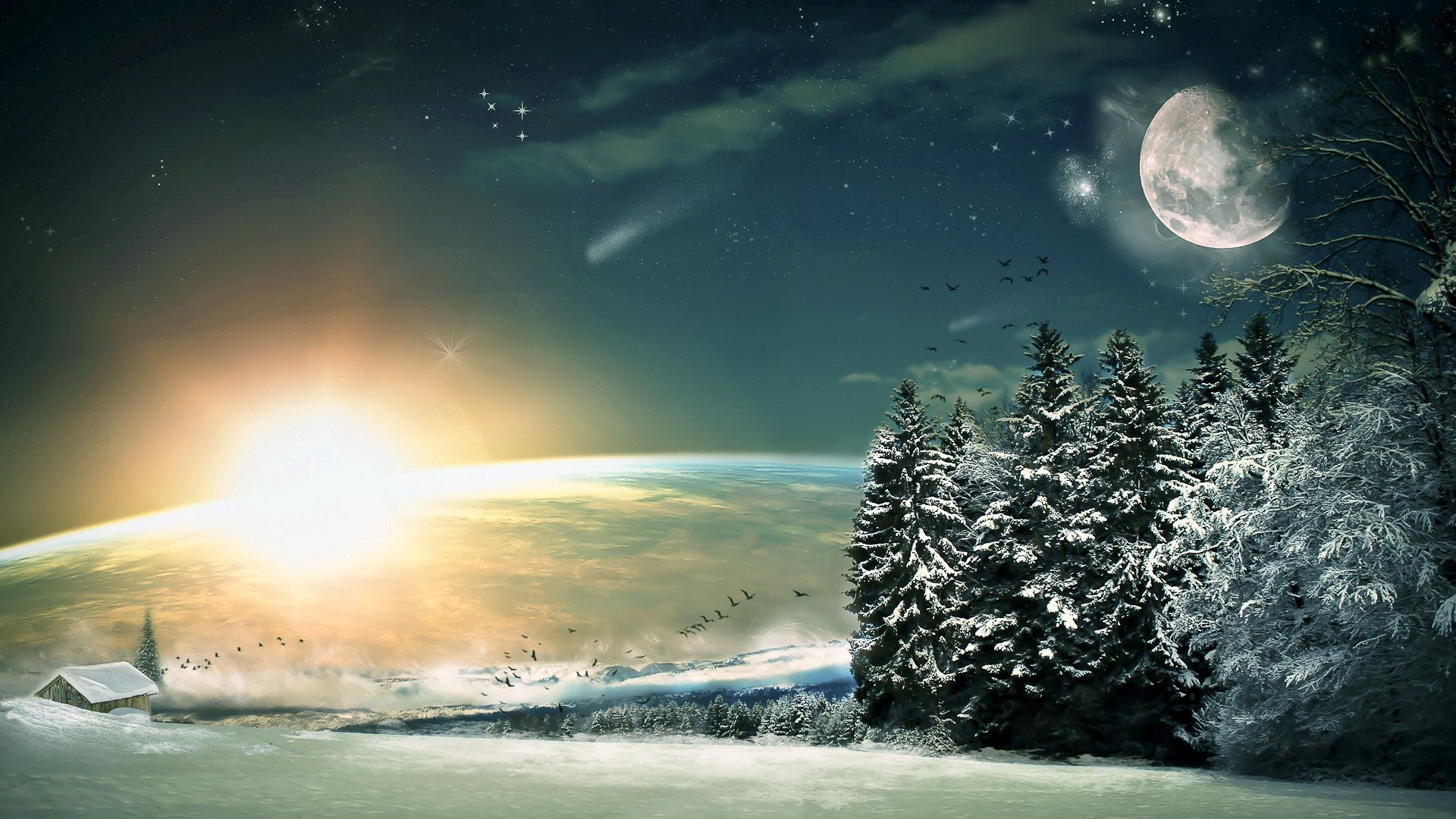 67421 Screensavers and Wallpapers Fiction for phone. Download Winter, Nature, Birds, Sun, Stars, Moon, Snow, Shine, Light, Forest, Descent, Fiction, That's Incredible, Ate pictures for free