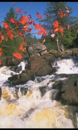 7853 скачать обои Растения, Пейзаж, Природа, Вода, Камни, Водопады - заставки и картинки бесплатно