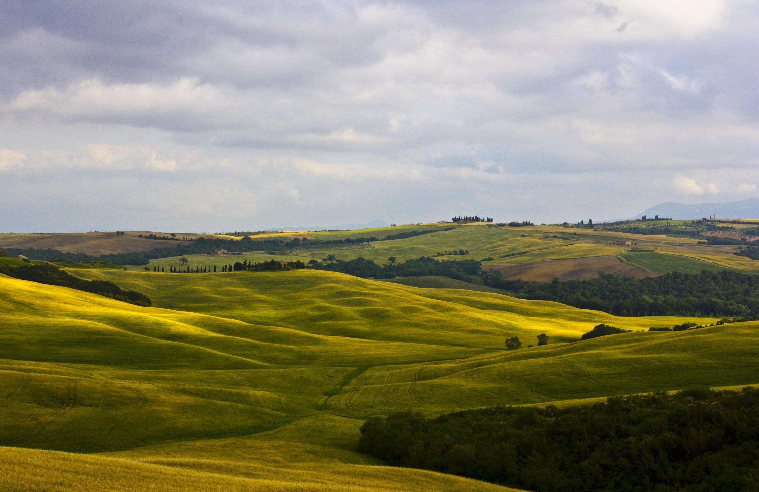 98000 Hintergrundbild herunterladen Natur, Felder, Italien, Toskana, Montalcino - Bildschirmschoner und Bilder kostenlos