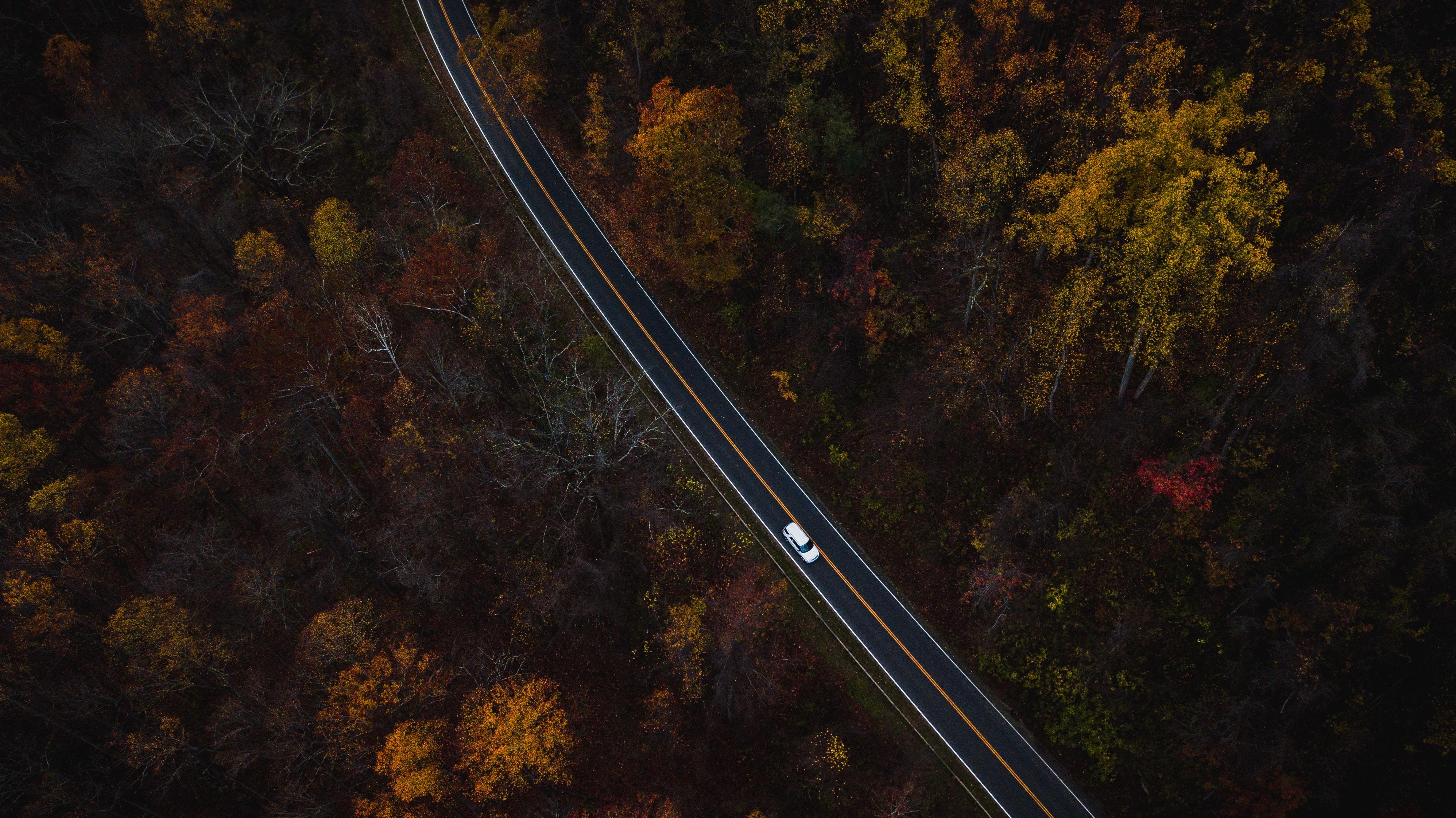 103326 скачать обои Машины, Природа, Деревья, Вид Сверху, Дорога - заставки и картинки бесплатно
