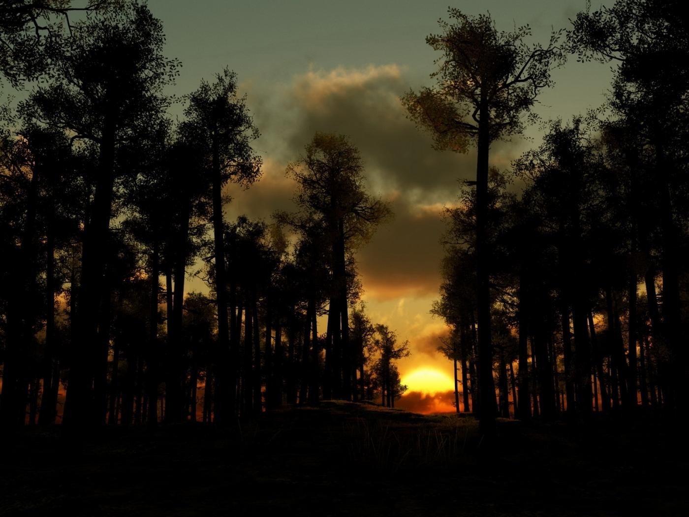 46745 скачать обои Пейзаж, Природа, Деревья, Закат - заставки и картинки бесплатно