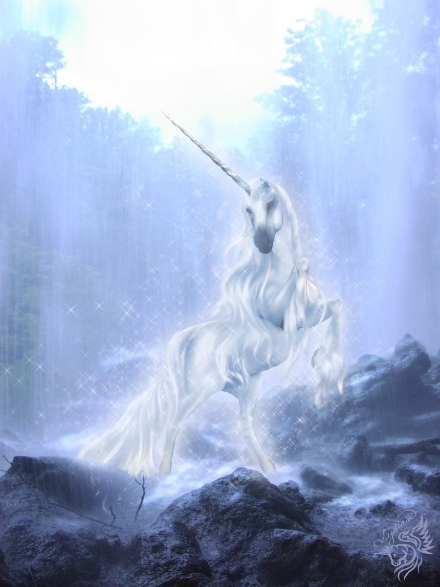 21993 Hintergrundbild herunterladen Tiere, Fantasie, Unicorns - Bildschirmschoner und Bilder kostenlos