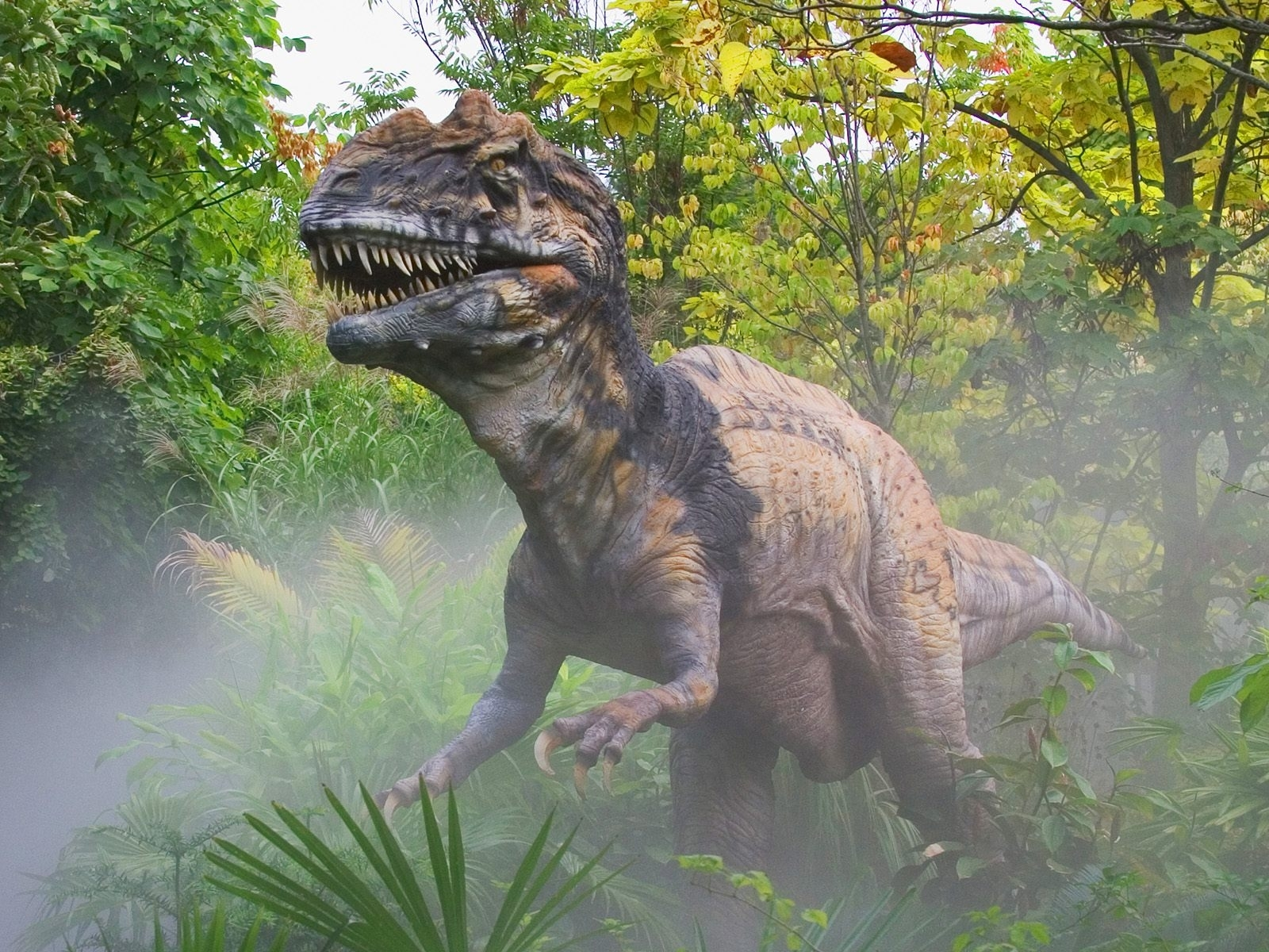4813 download wallpaper Animals, Dinosaurs screensavers and pictures for free