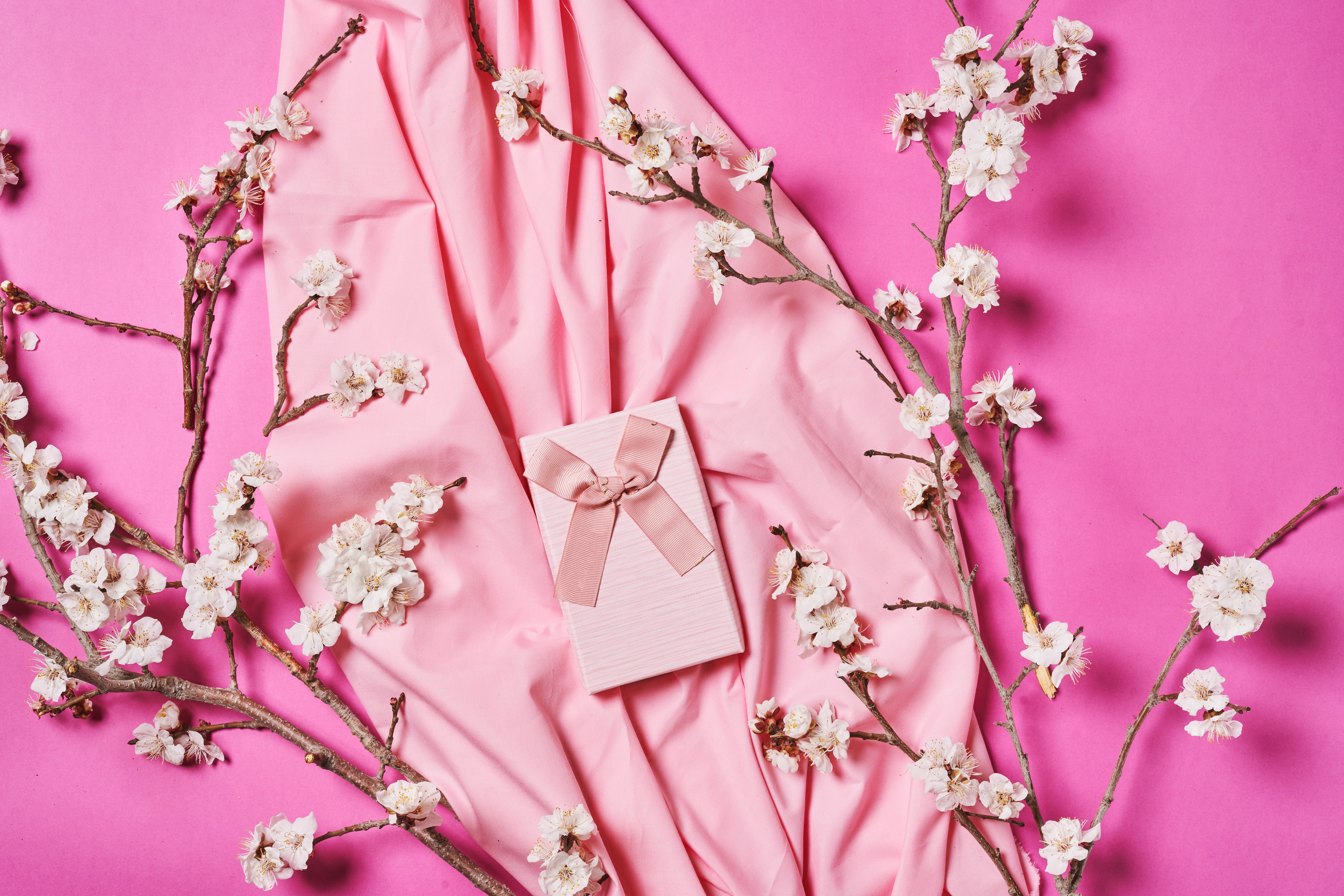109713 download wallpaper Miscellanea, Miscellaneous, Box, Tape, Present, Gift, Cloth, Branches, Pink, Flowers screensavers and pictures for free