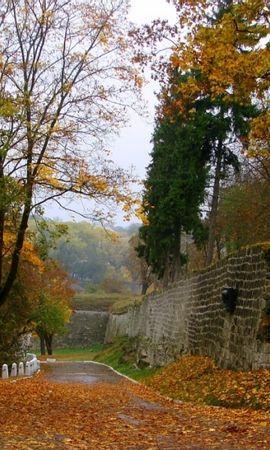 39031 скачать обои Пейзаж, Дороги, Осень - заставки и картинки бесплатно