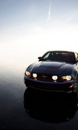 47017 скачать обои Транспорт, Машины, Мустанг (Mustang) - заставки и картинки бесплатно