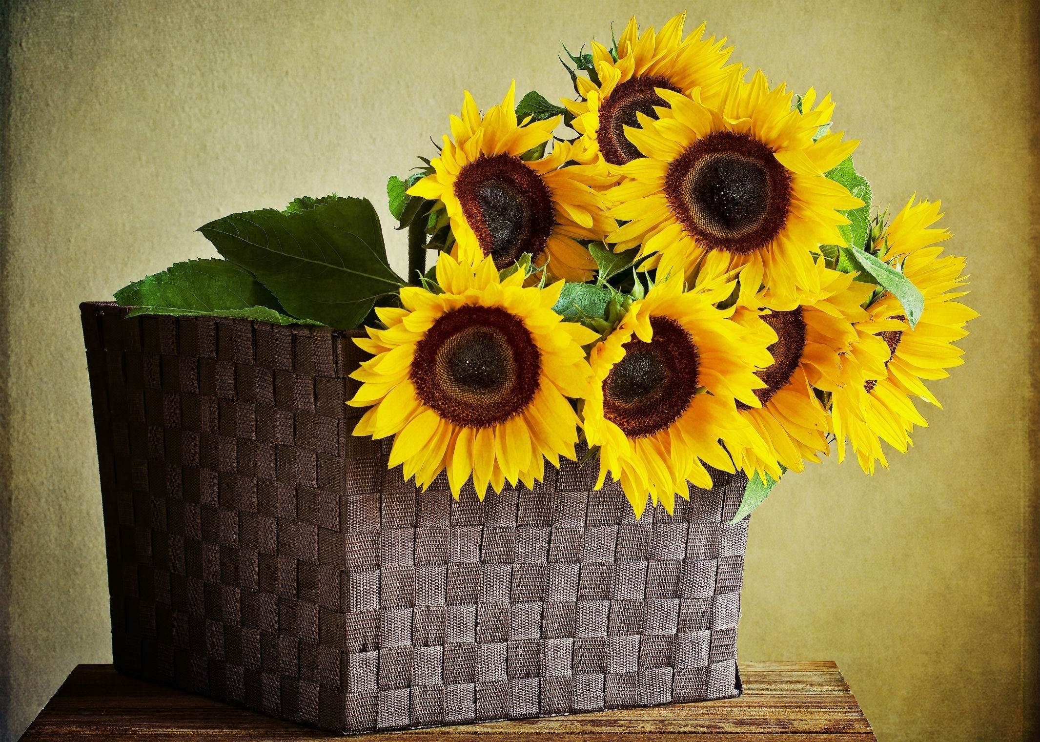 110745 download wallpaper Flowers, Basket, Wall, Table, Leaves, Sunflowers screensavers and pictures for free