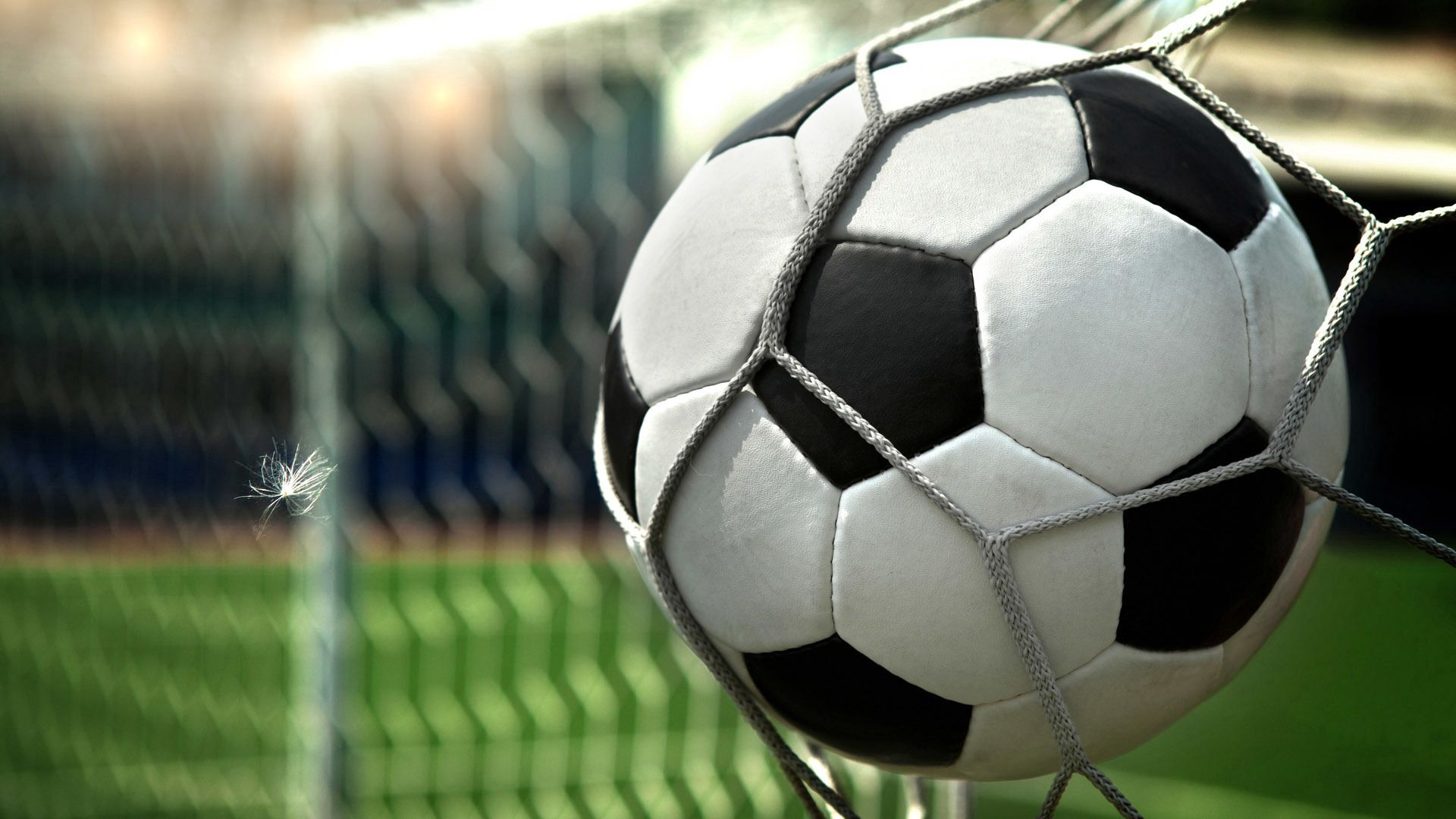 63463 download wallpaper Football, Sports, Grid, Ball screensavers and pictures for free
