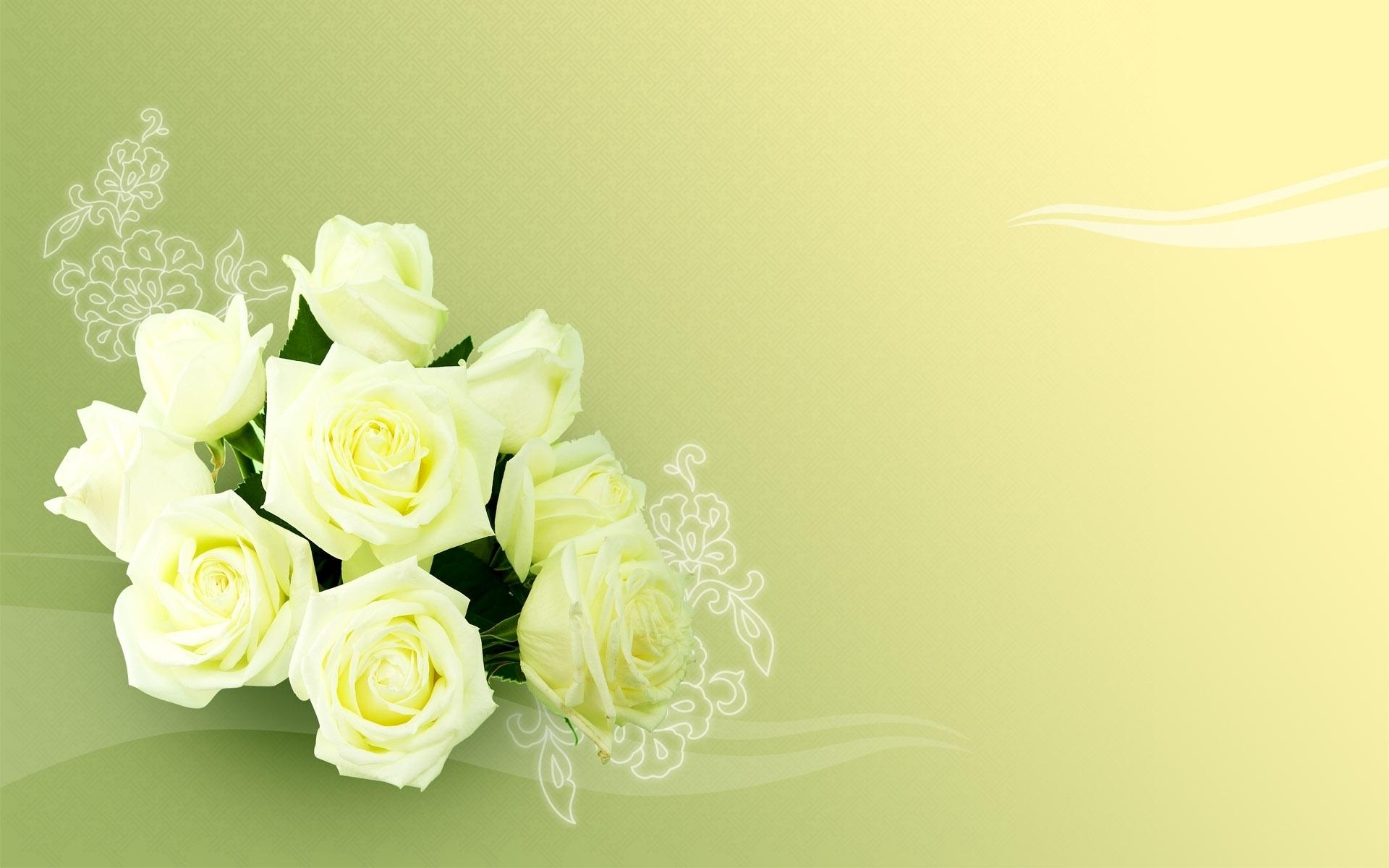 941 скачать обои Растения, Цветы, Розы - заставки и картинки бесплатно