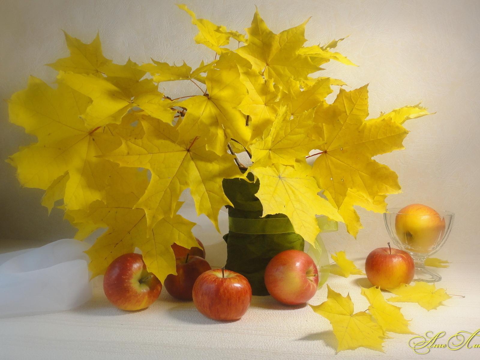 21949 скачать обои Растения, Еда, Листья, Яблоки, Букеты, Натюрморт - заставки и картинки бесплатно