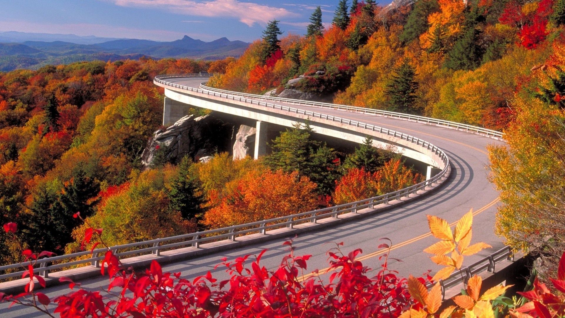 136652 скачать обои Природа, Дорога, Поворот, Осень, Асфальт, Серпантин, Лес, Высота - заставки и картинки бесплатно